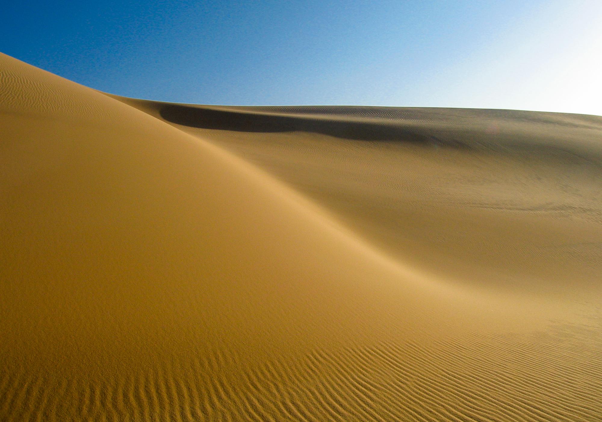 my desert site-264.jpg