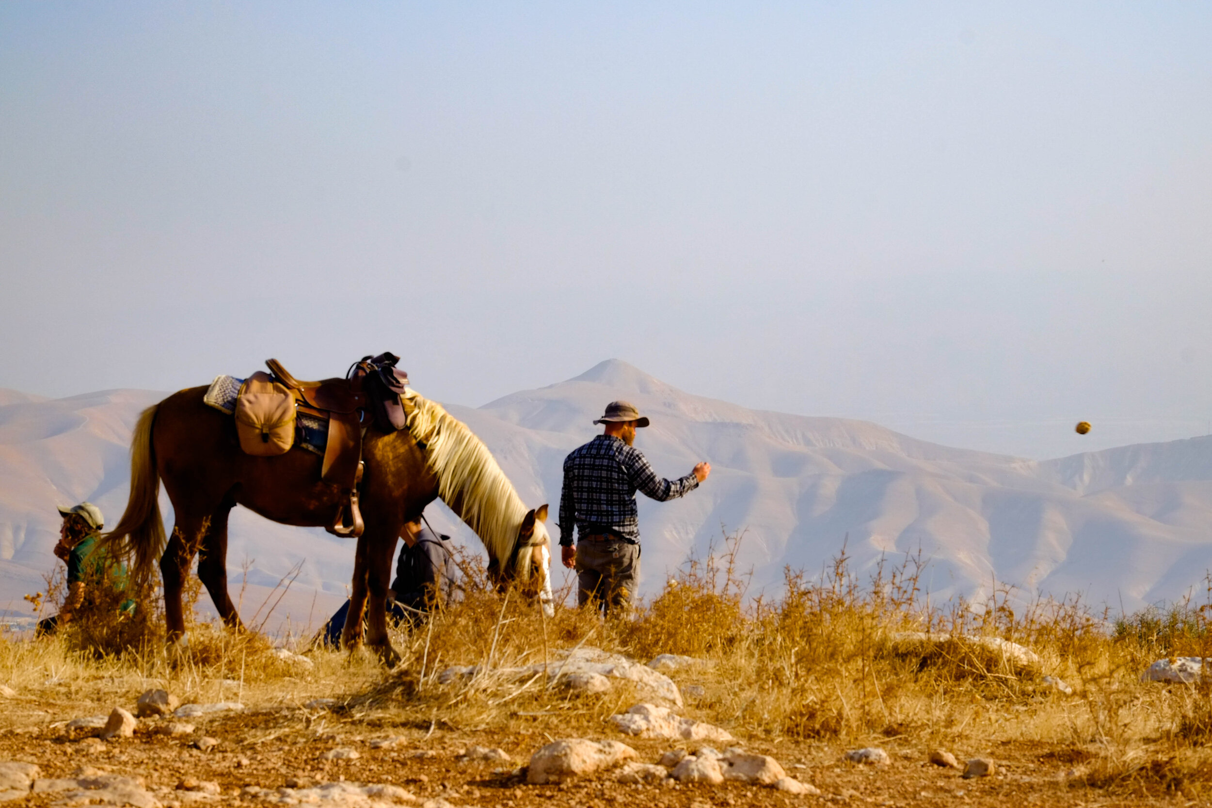 """and I caught the head-settler Elhanan throwing a stone. (to keep away his own sheep) when his hilltop youth record themselves filming Bedouin throwing stones at their own goats saying """"a masked Palestinian is throwing stones..""""     ta"""