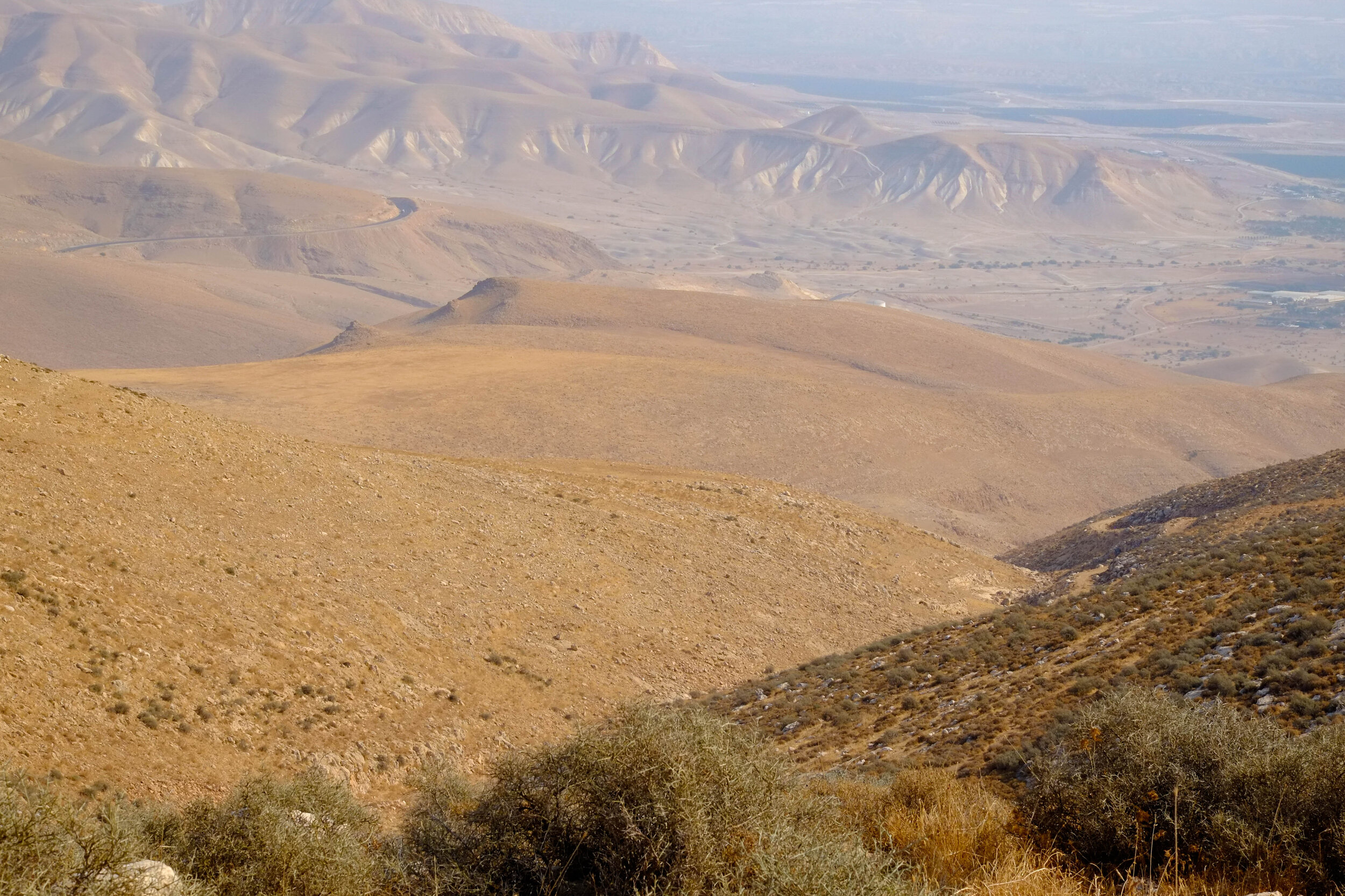 across the wadi, there is nothing for the herds to eat
