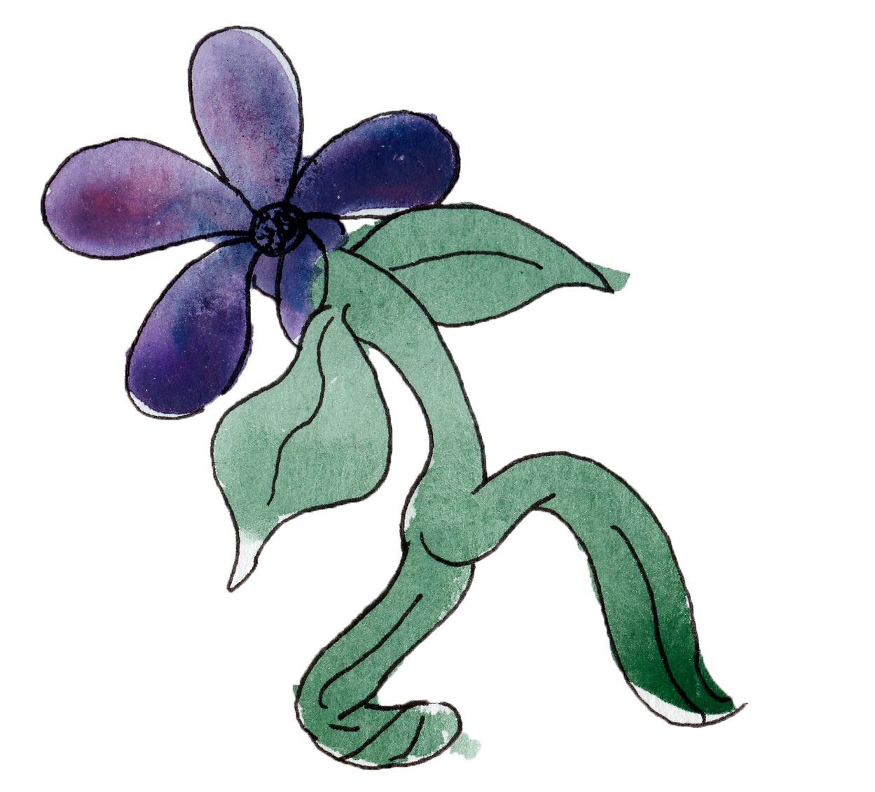 flowers7.png