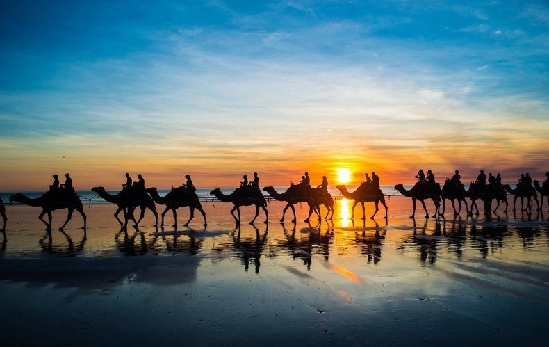 Watching the camels cross the beach in Broome, Western Australia.
