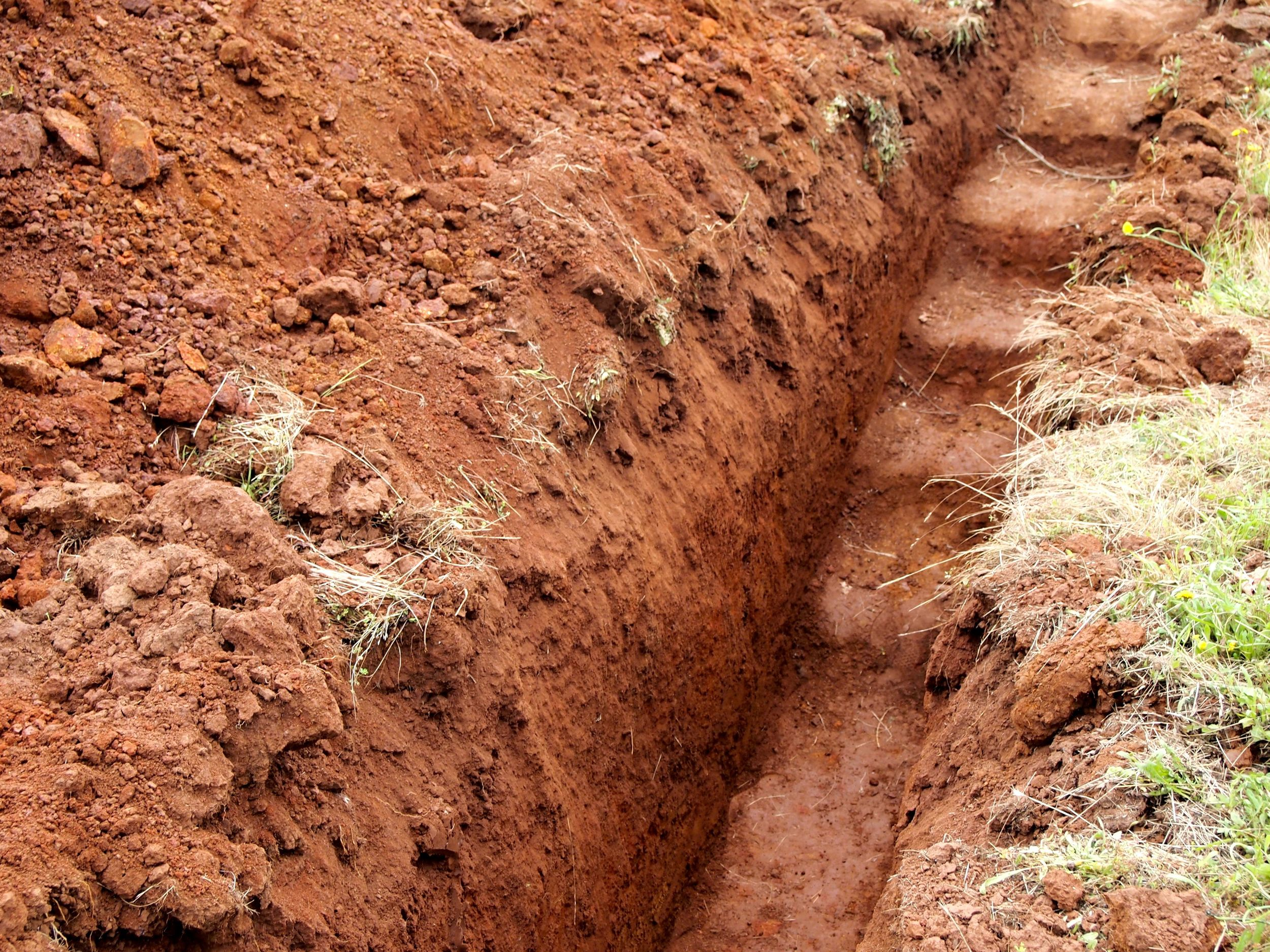 A good example of the volcanic Jory soil prevalent in Dundee Hills.