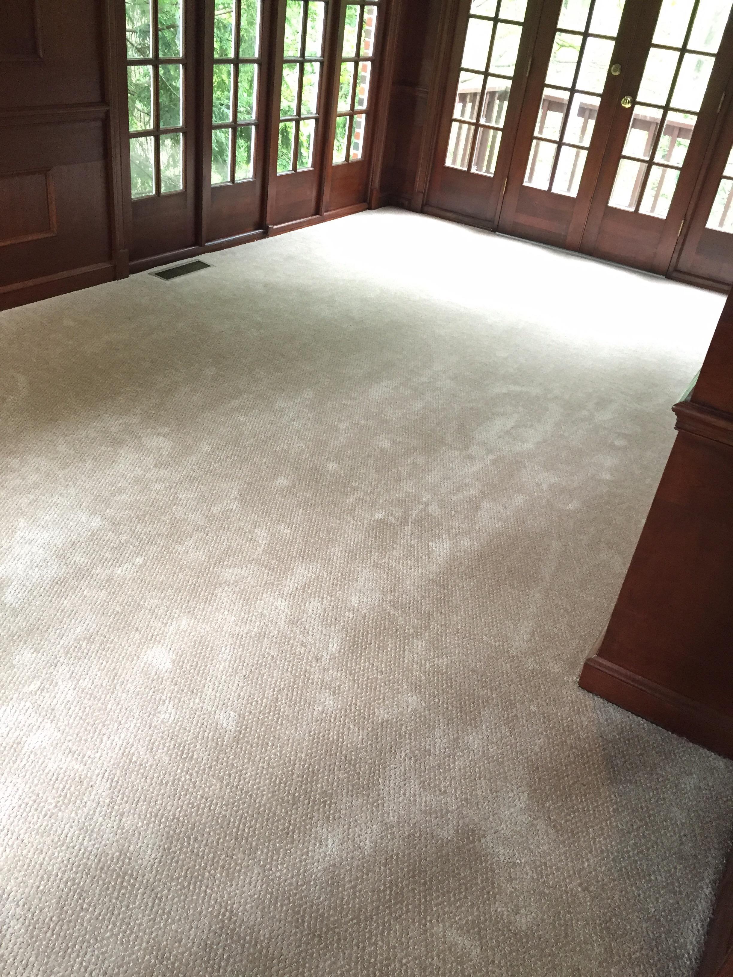 1 - Carpet in House.jpg