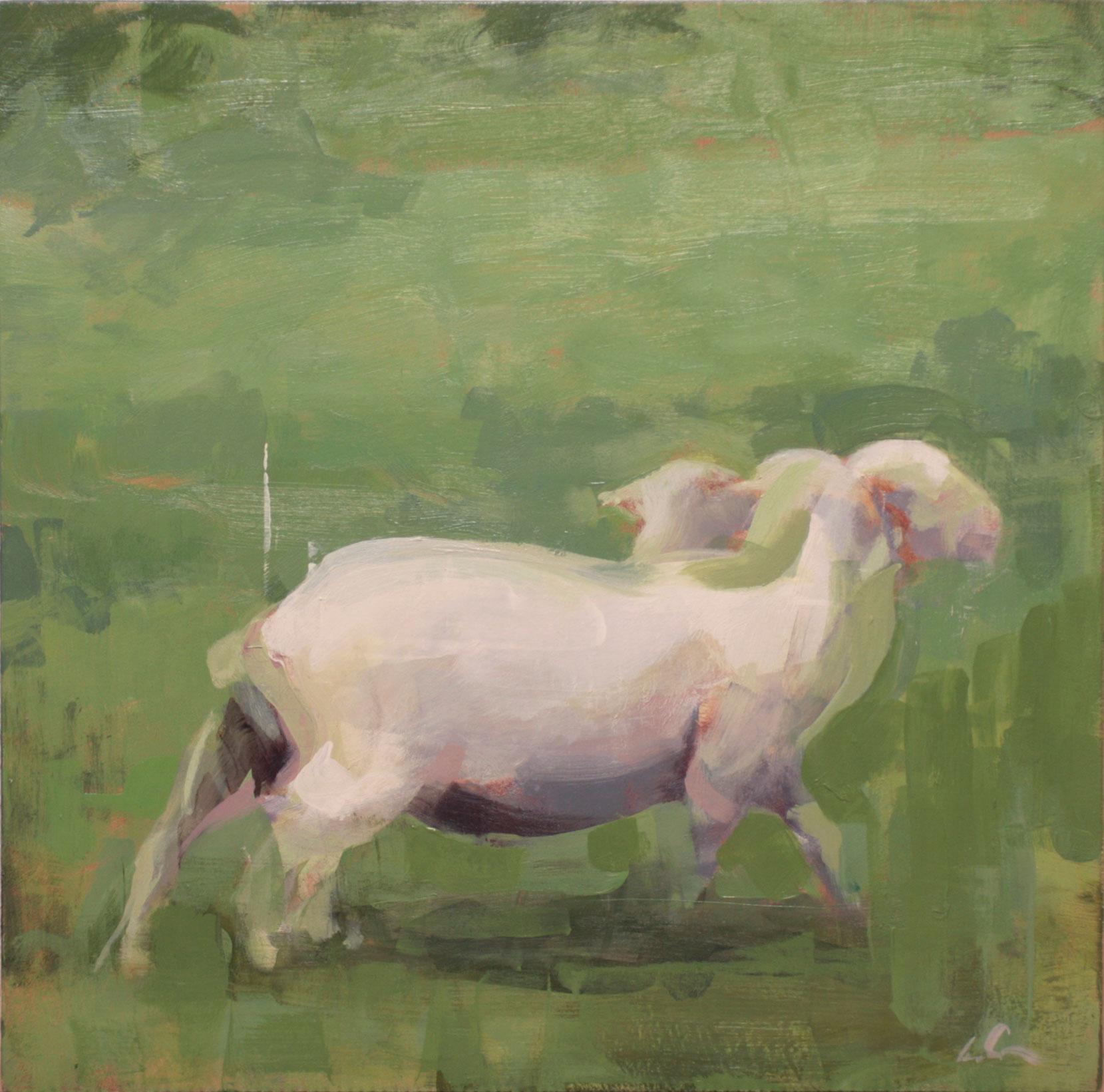 mark-crenshaw-1405-one-sheep-walking.jpg