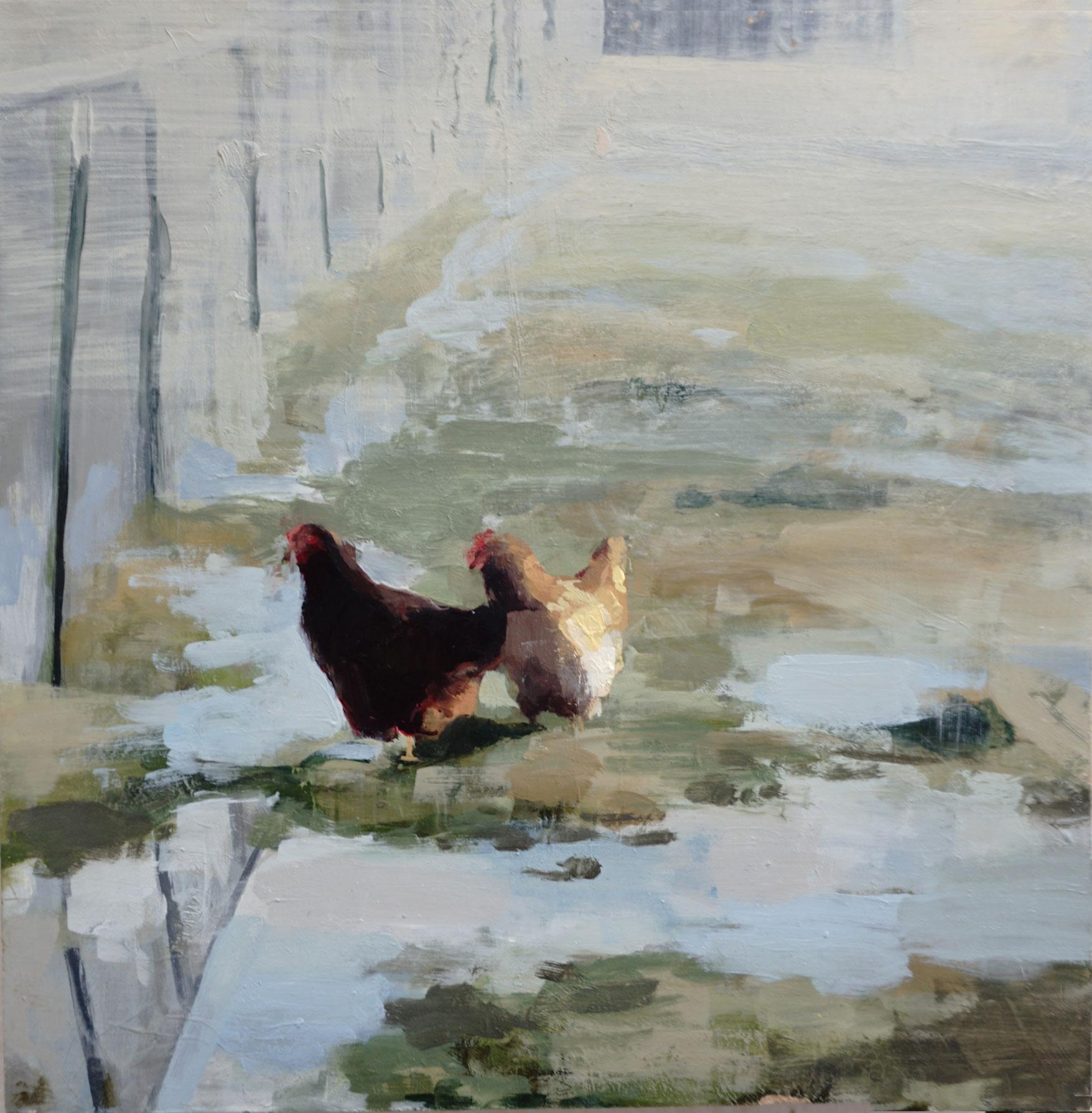 mark-crenshaw-1516-chickens-in-irrigation.jpg