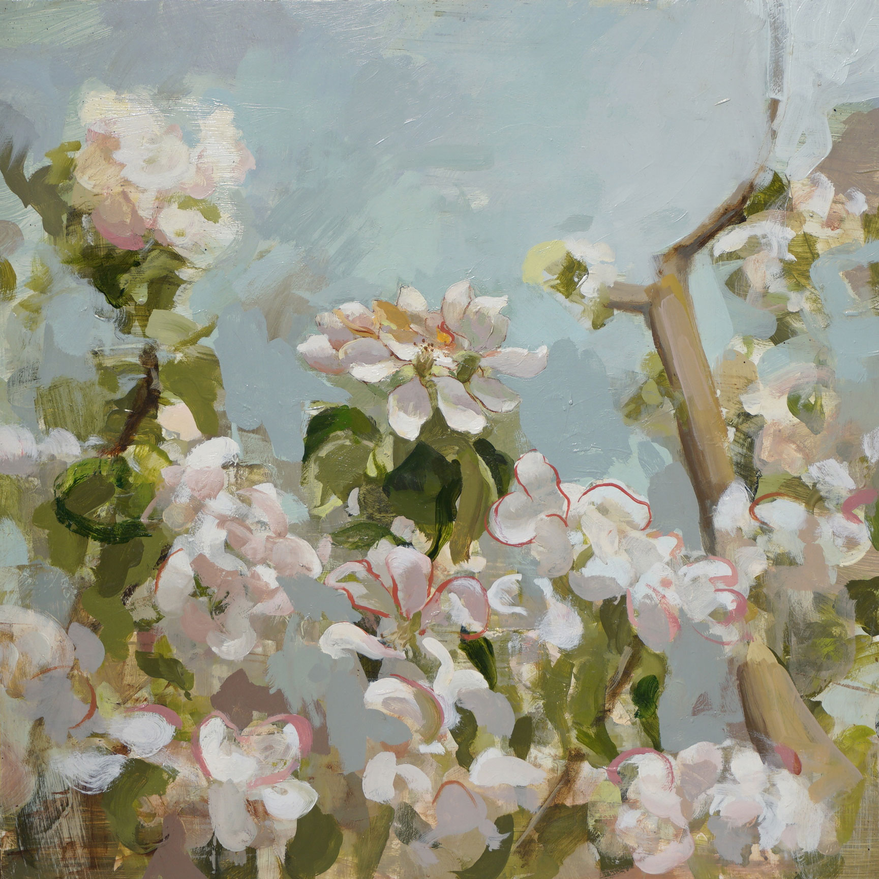 mark-crenshaw-1519-apple-blossom-2-(cezane).jpg