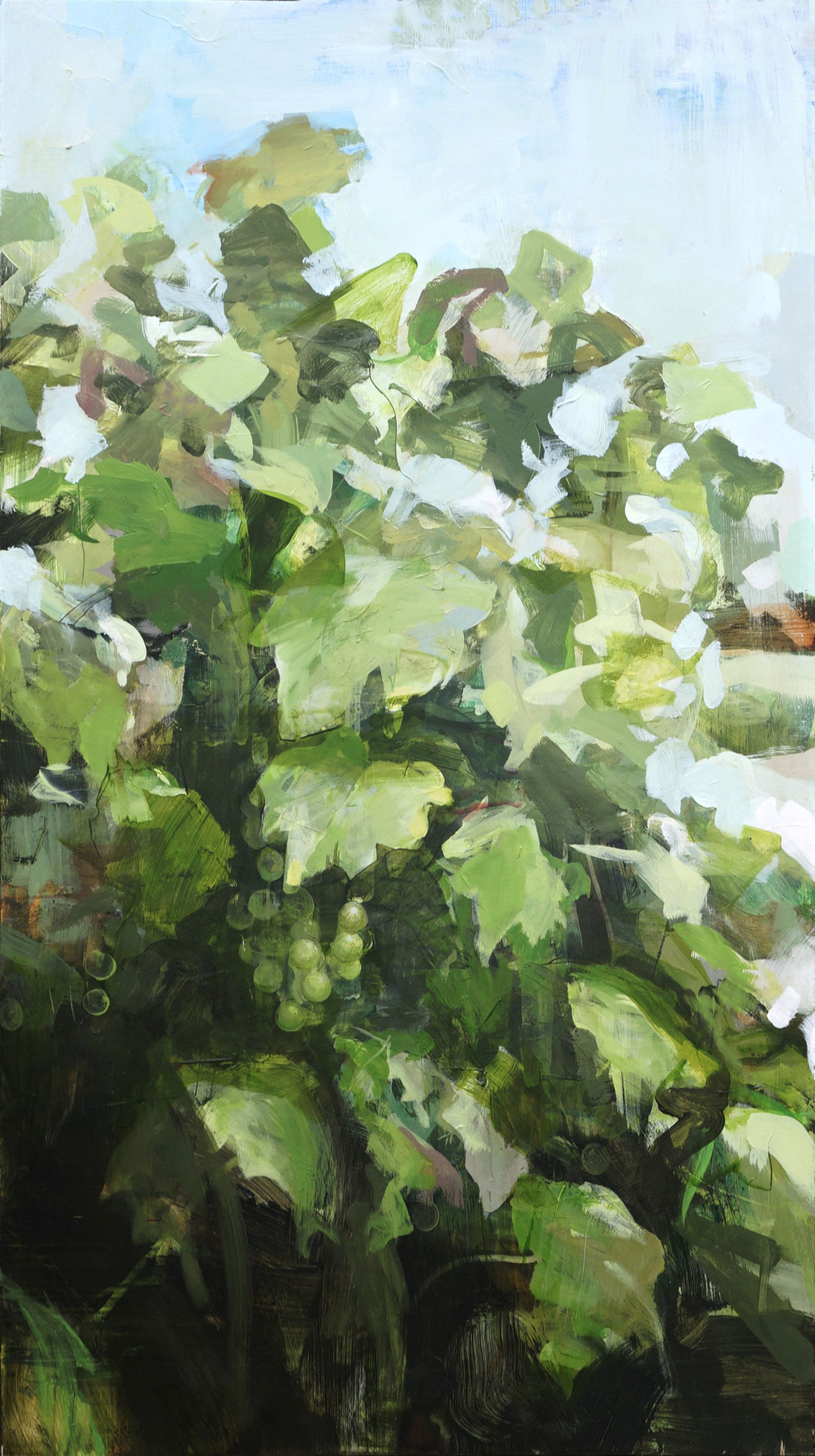 mark-crenshaw-1525-grapevine.jpg