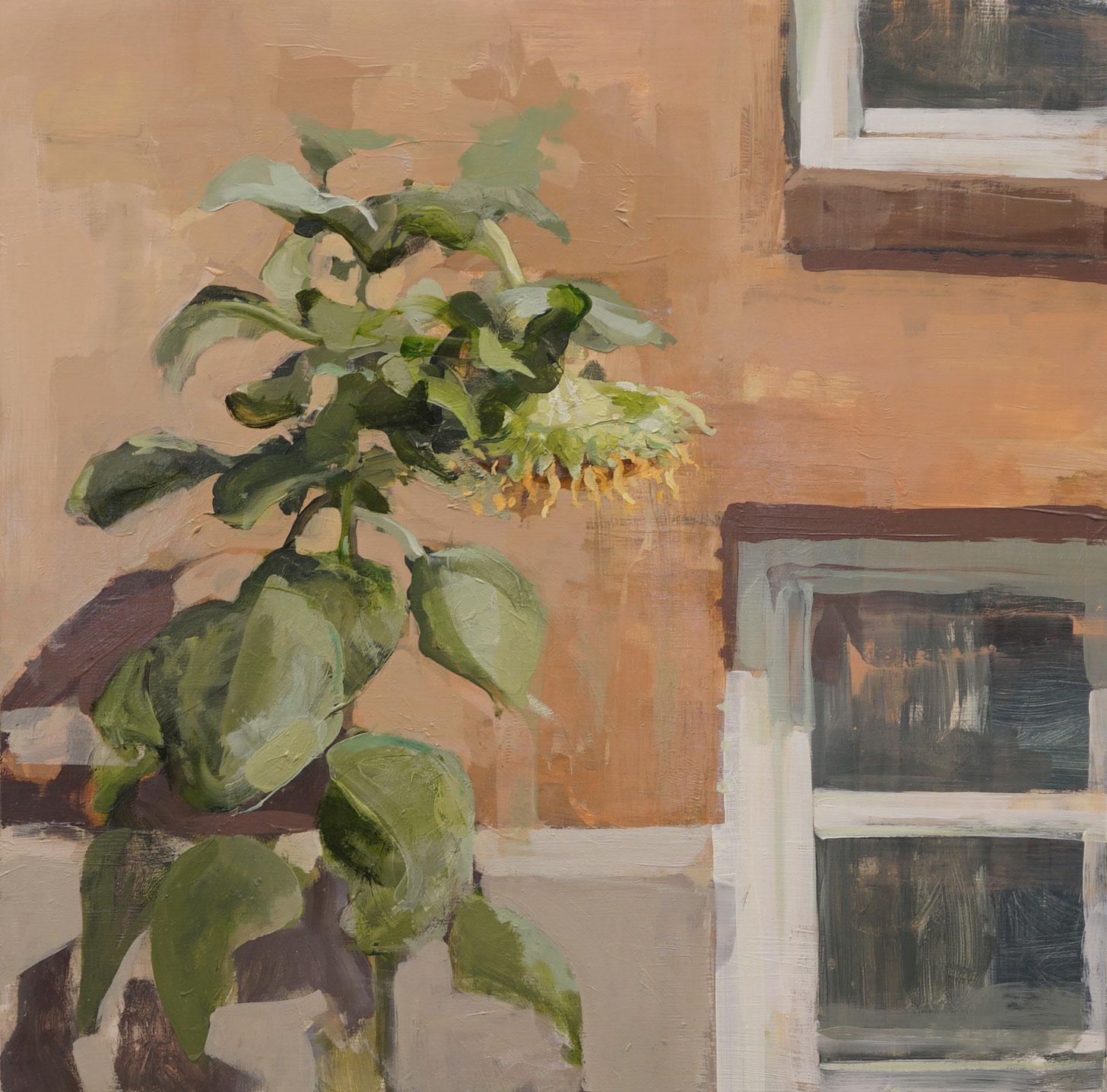 mark-crenshaw-1504-sunflower.jpg