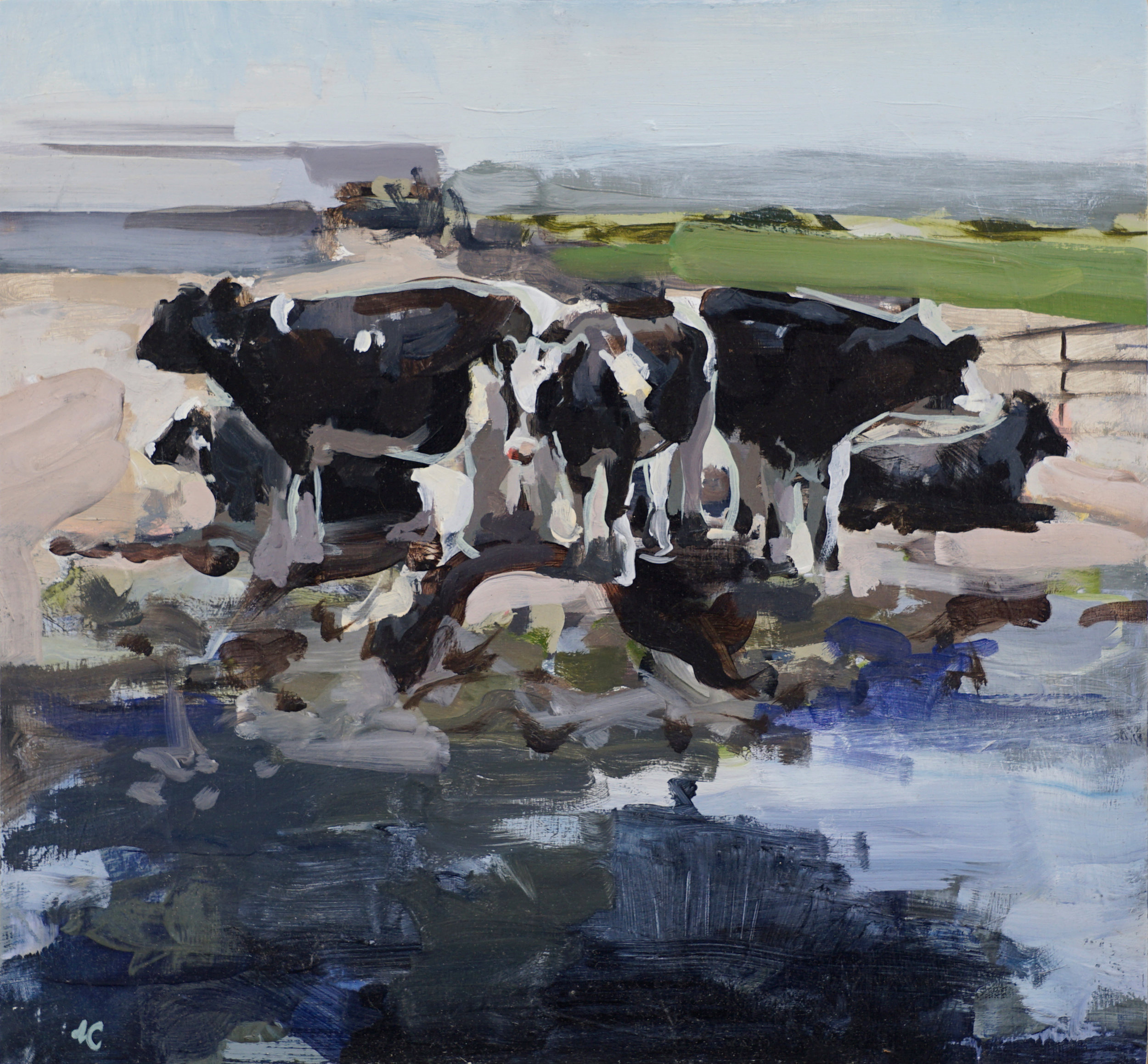 mark crenshaw cows outlined