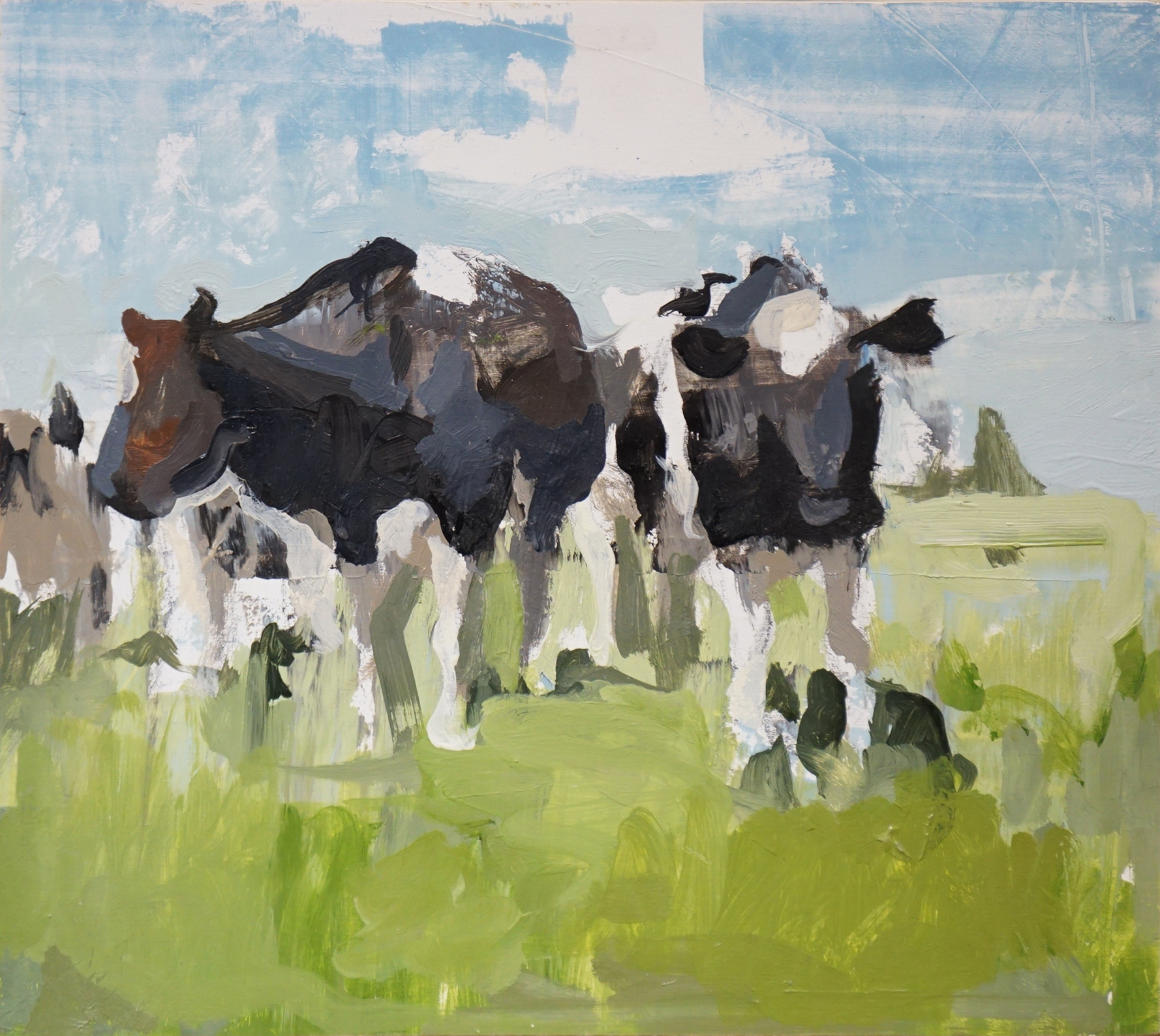mark-crenshaw-1653-black-and-white-cows-in-blue-sky-green-grass.jpg