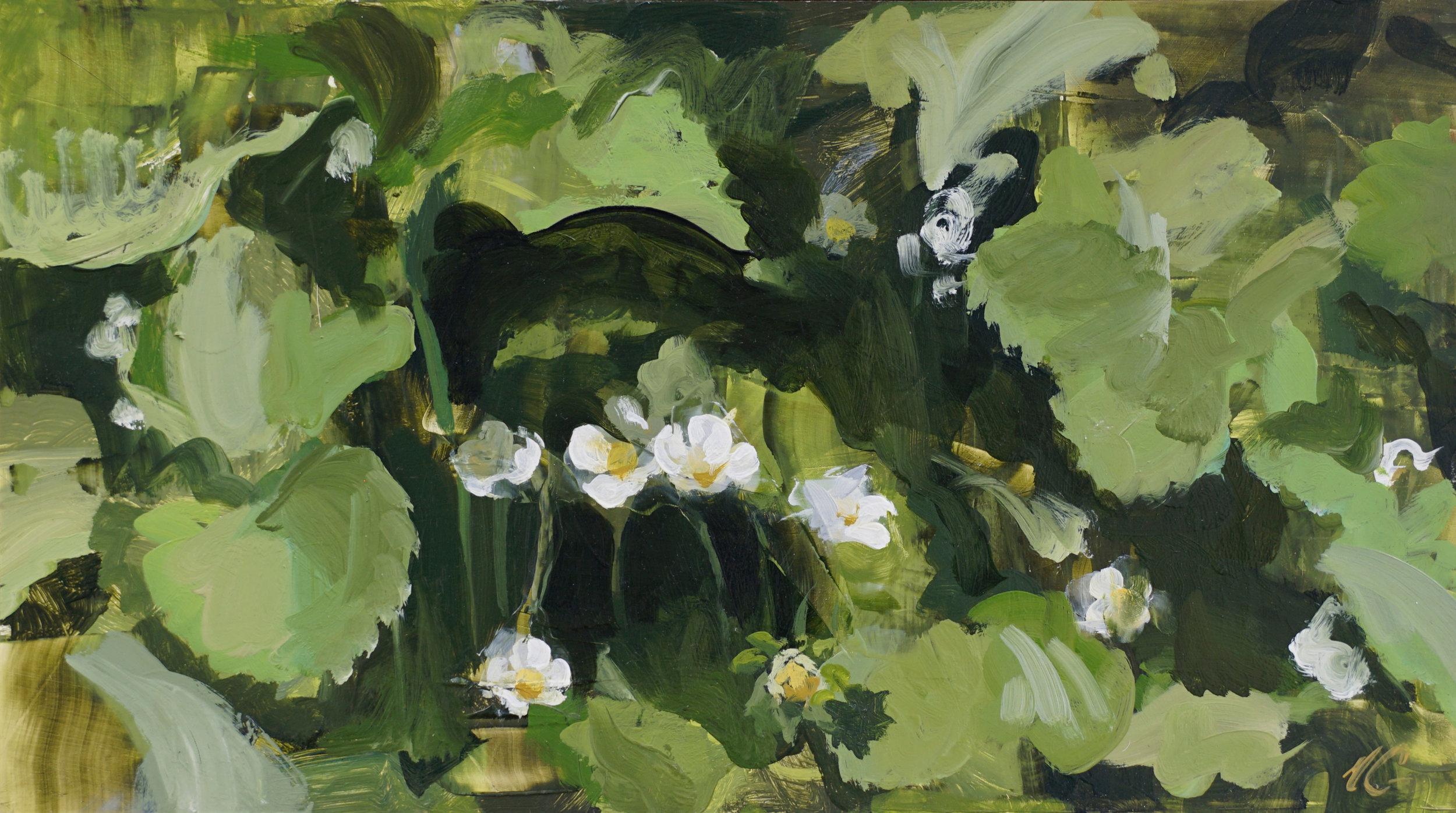 mark-crenshaw-1654-strawberry-blossoms,-tall-blossoms-b.jpg