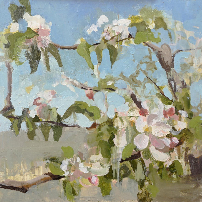 mark-crenshaw-1655-apple-blossom-branch-fence-b.jpg
