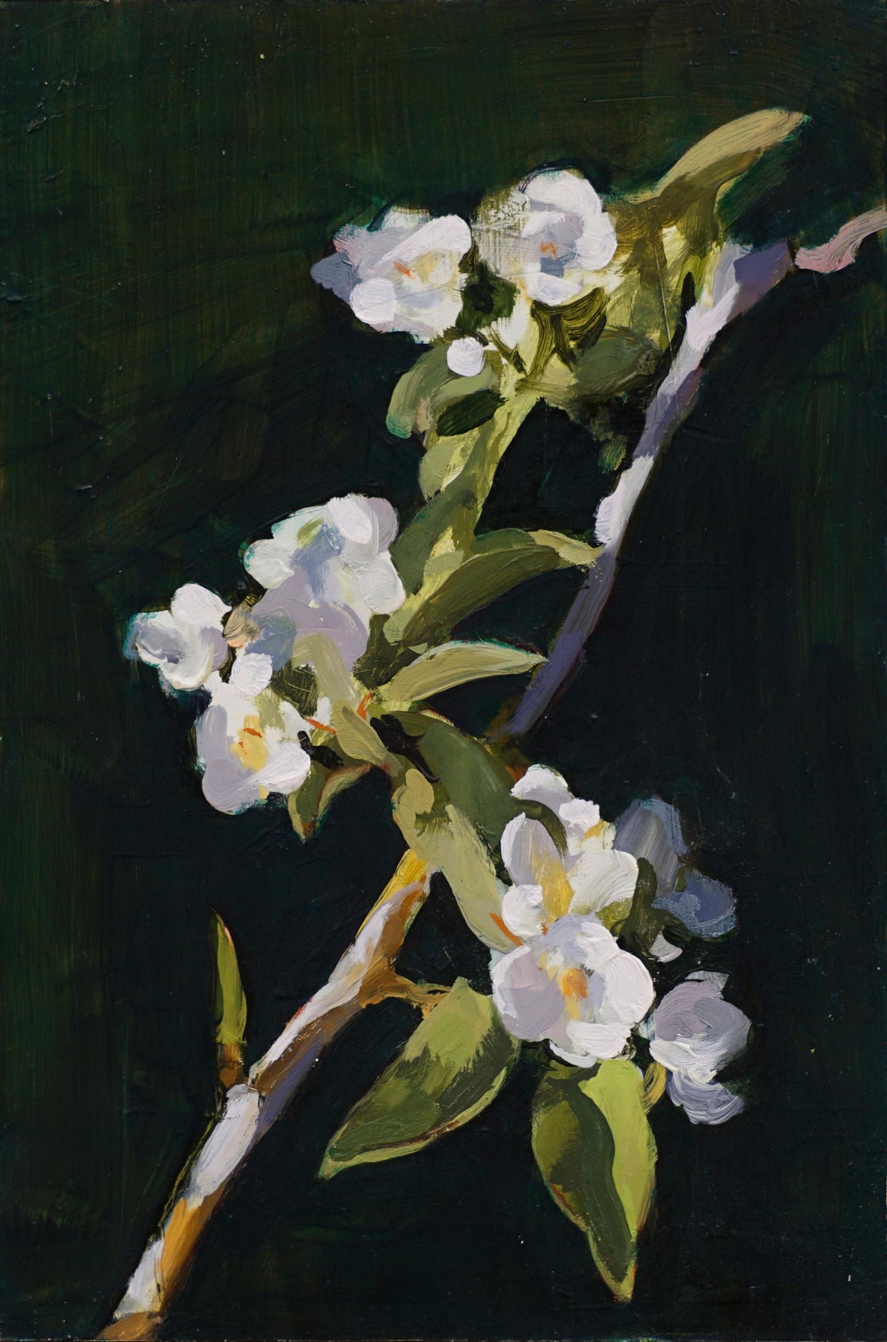 mark-crenshaw-1723-pear-blossom-a.jpg