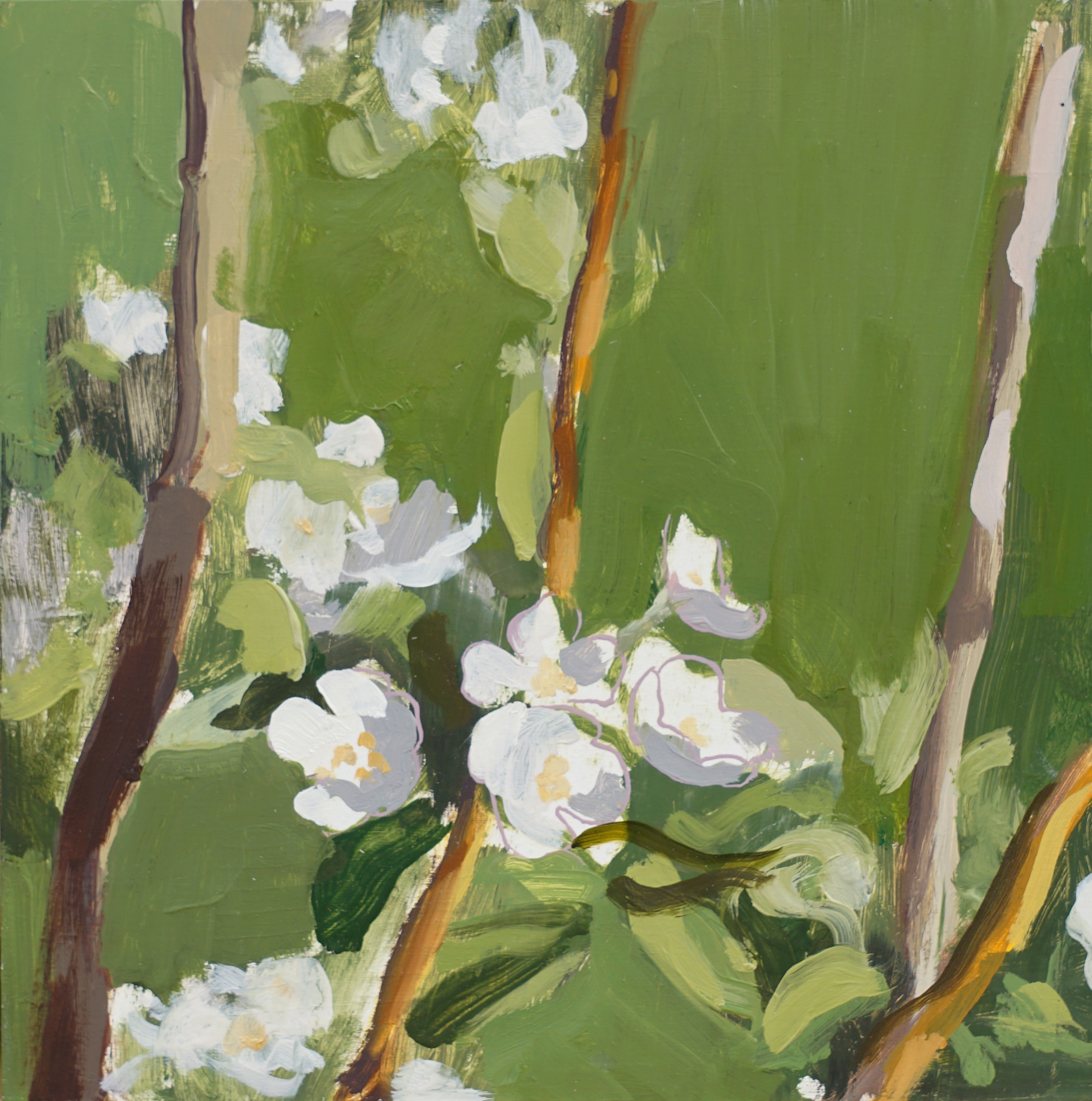 mark-crenshaw-1734-pear-blossom-green-with-sticks-and-pink-outlines.jpg