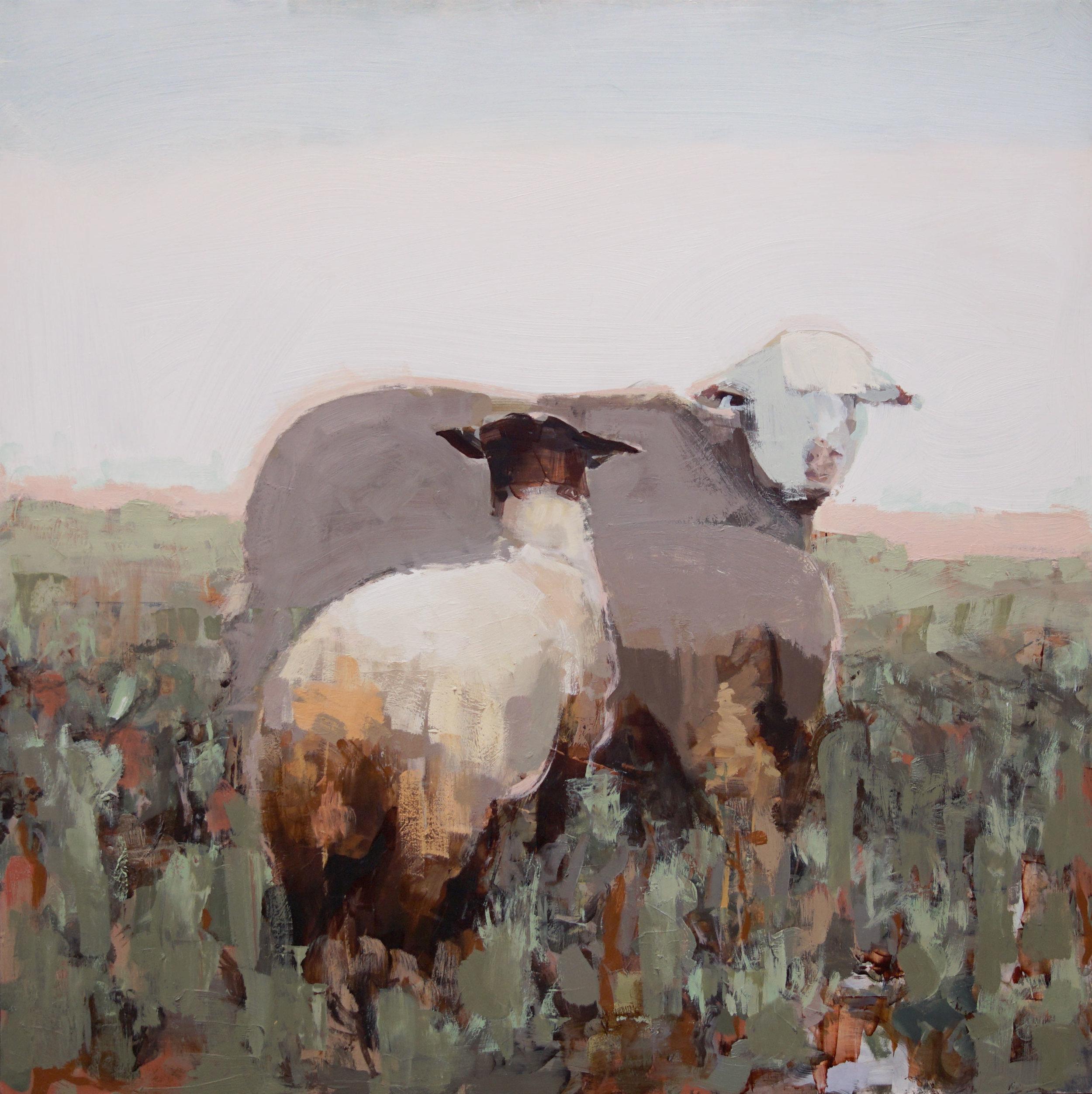 mark-crenshaw-1756-strawberry-sheep.jpg