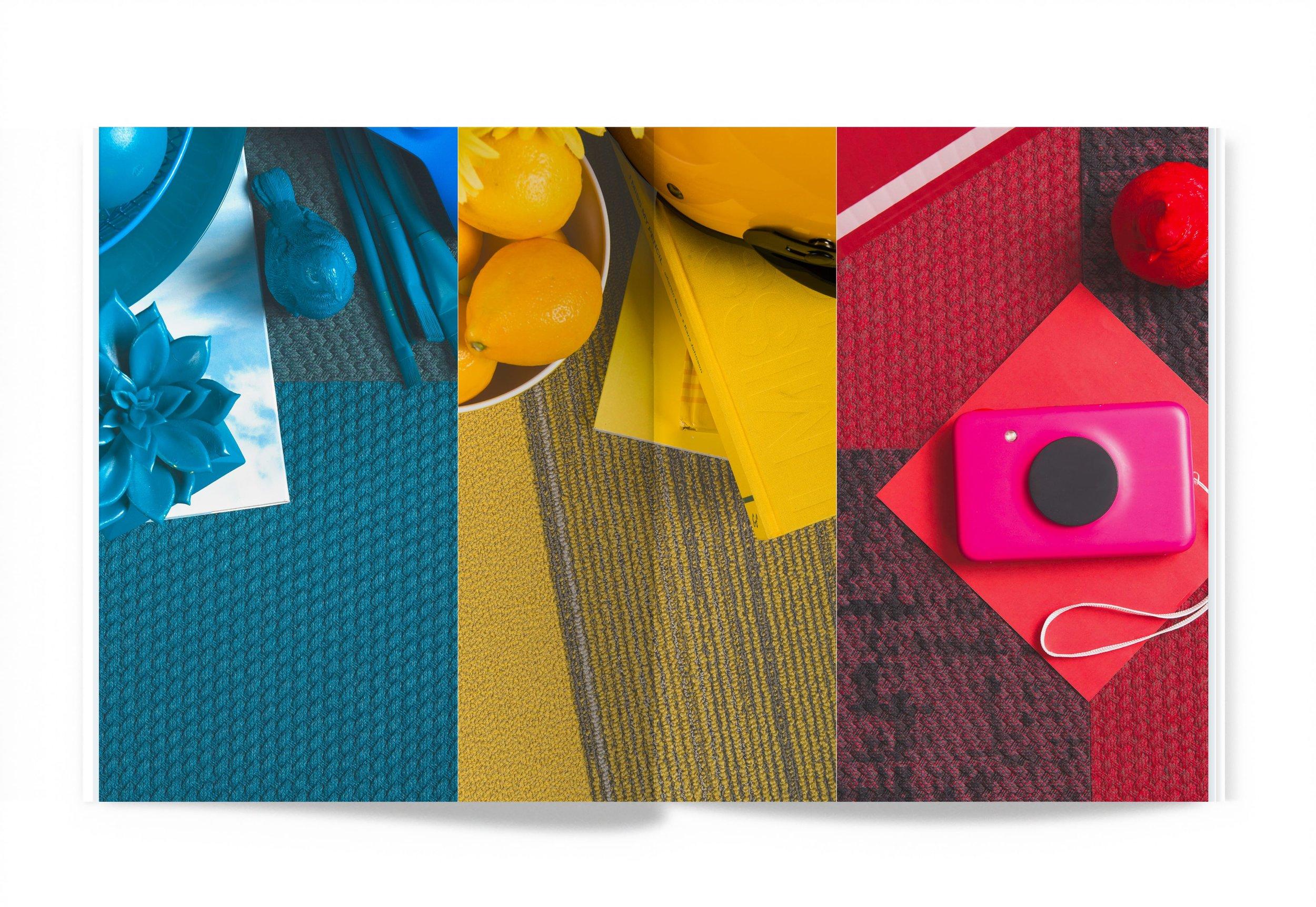 SHIFT-ColorSpread-min.jpg
