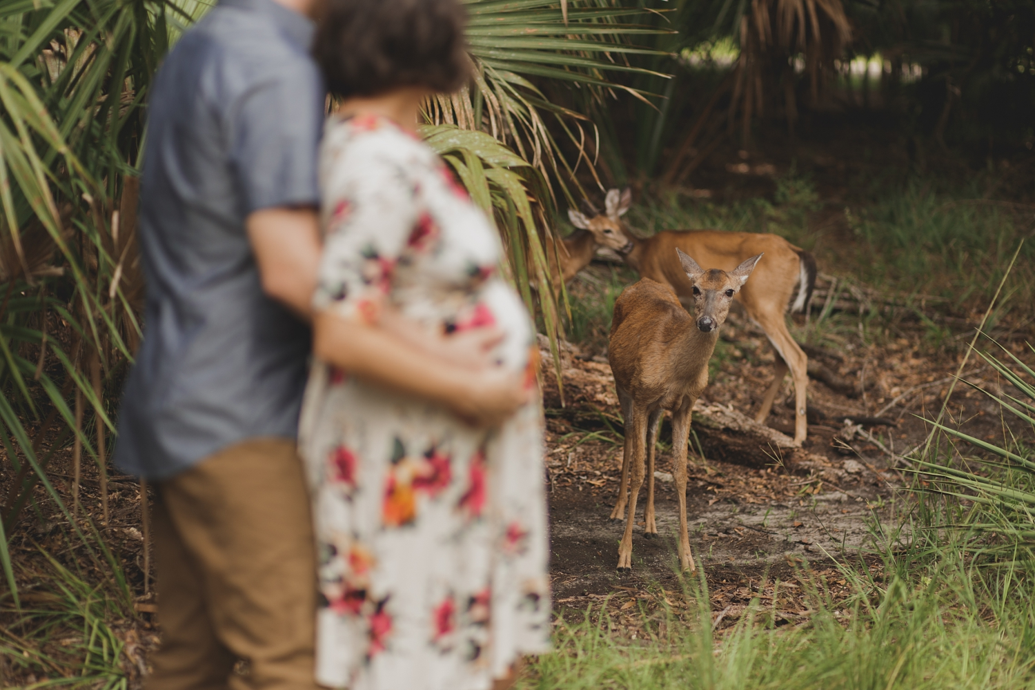 Stacy Paul Photography -  florida nature boho maternity photographer_0006.jpg