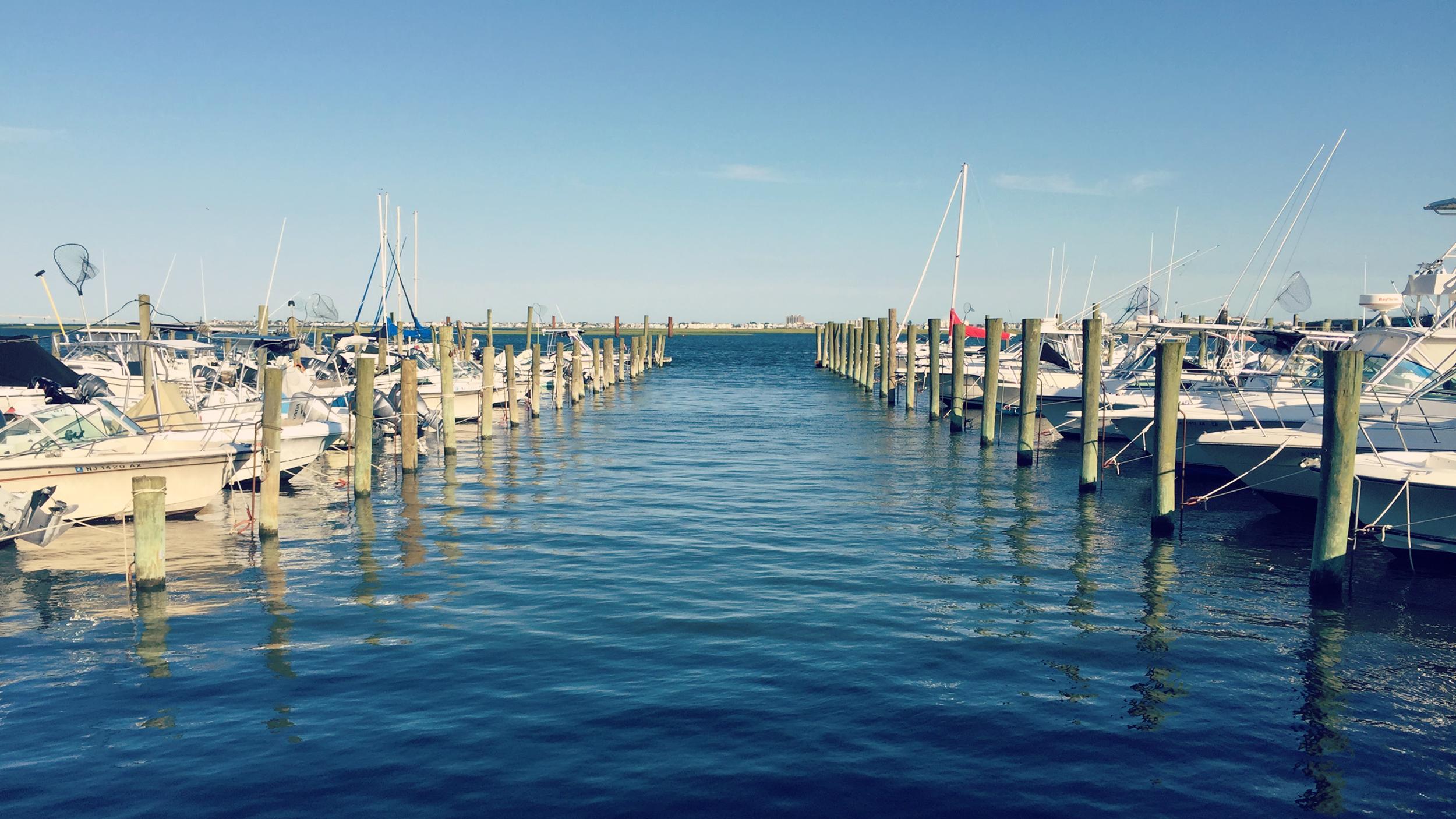 Blue Docks.png