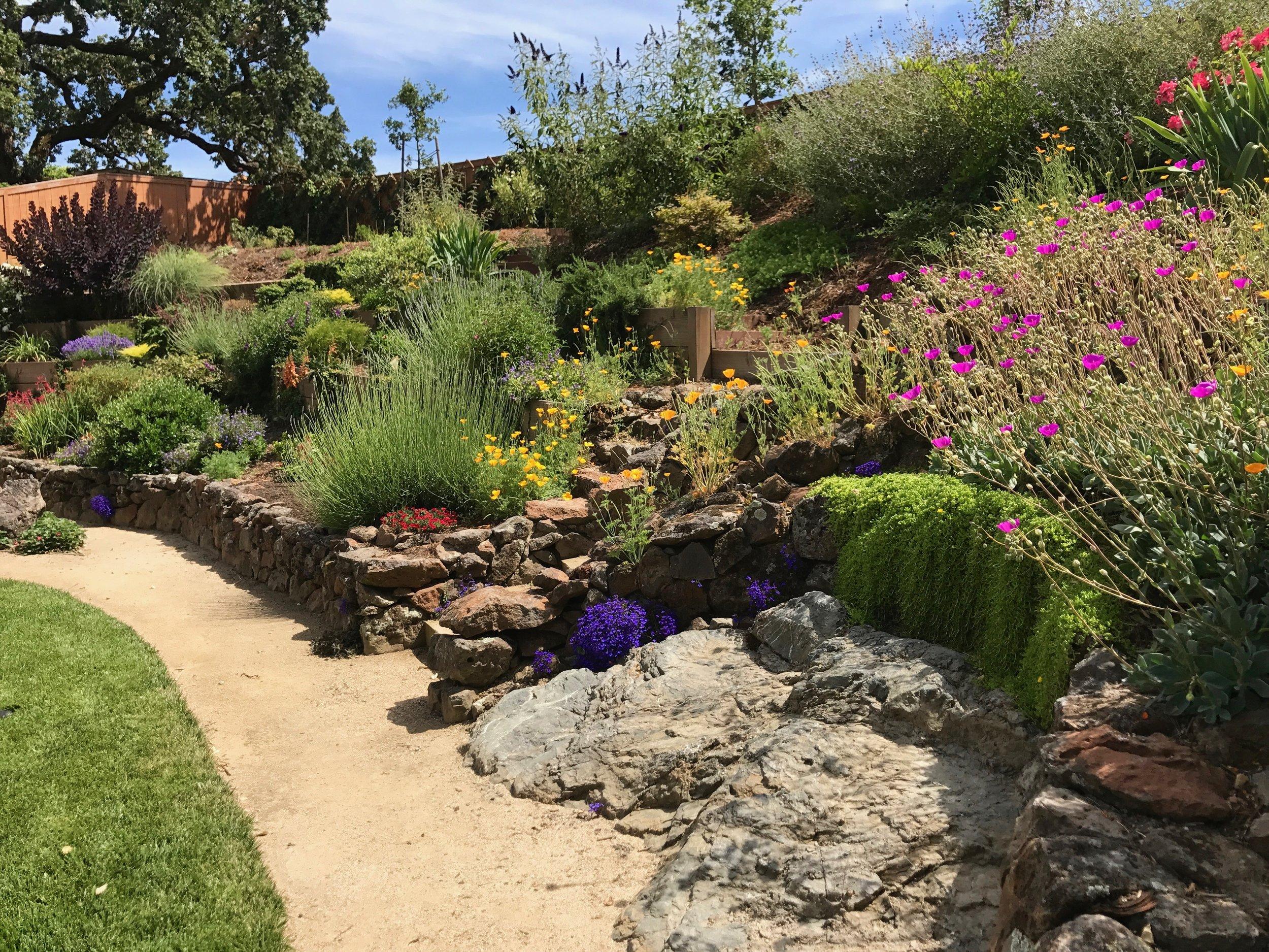 A Florist's Dream Garden
