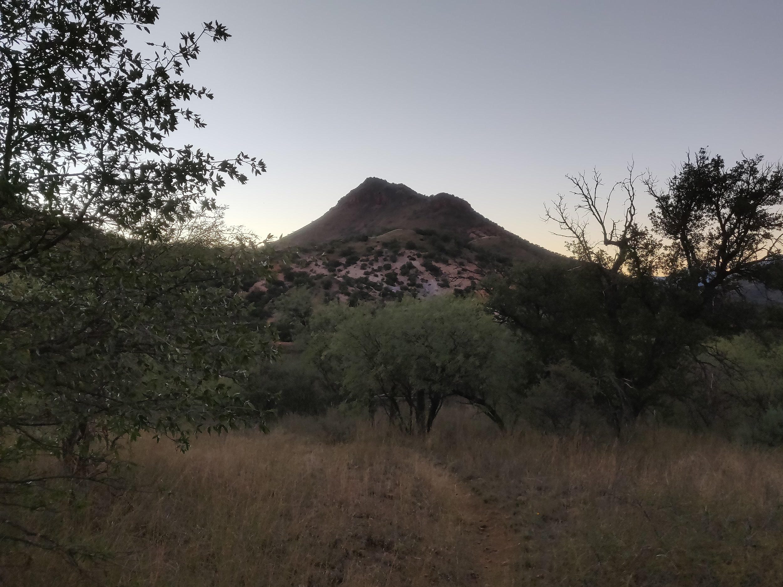 Southern Arizona day 1 031.jpg