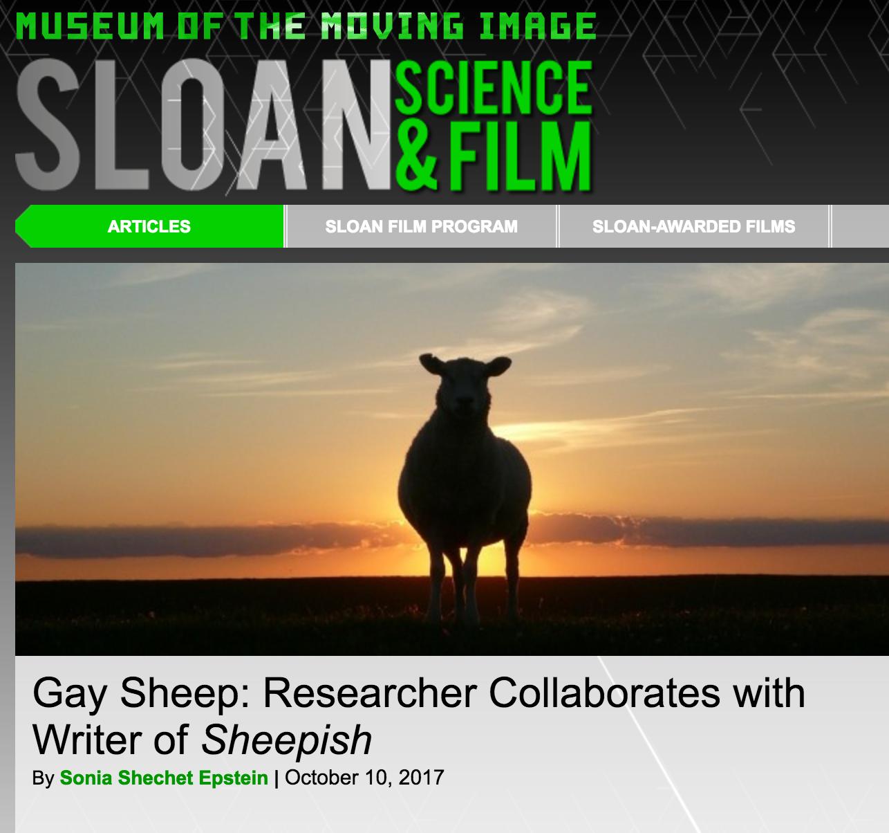 scienceandfilm_sheepish