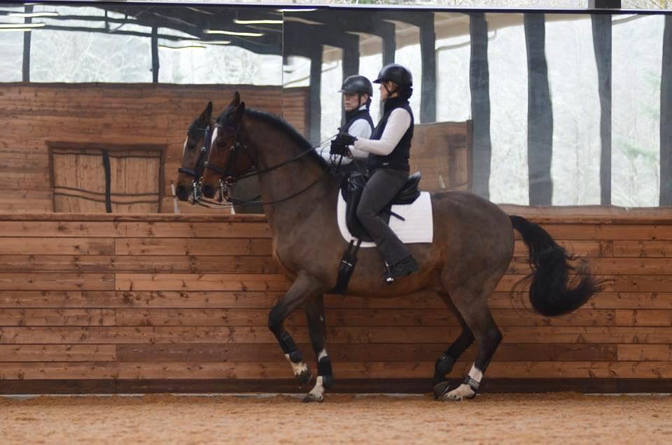 Jane Judson Dressage — Old Training & Lessons Page