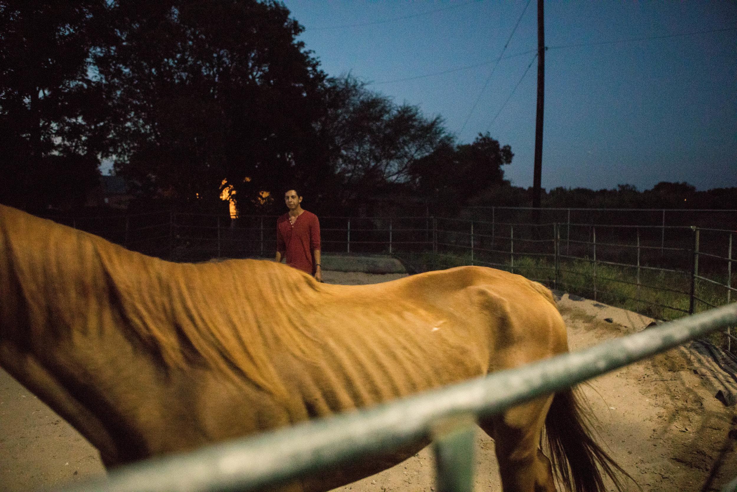 BonnieArbittier_horse_ohotos_luis-3.jpg