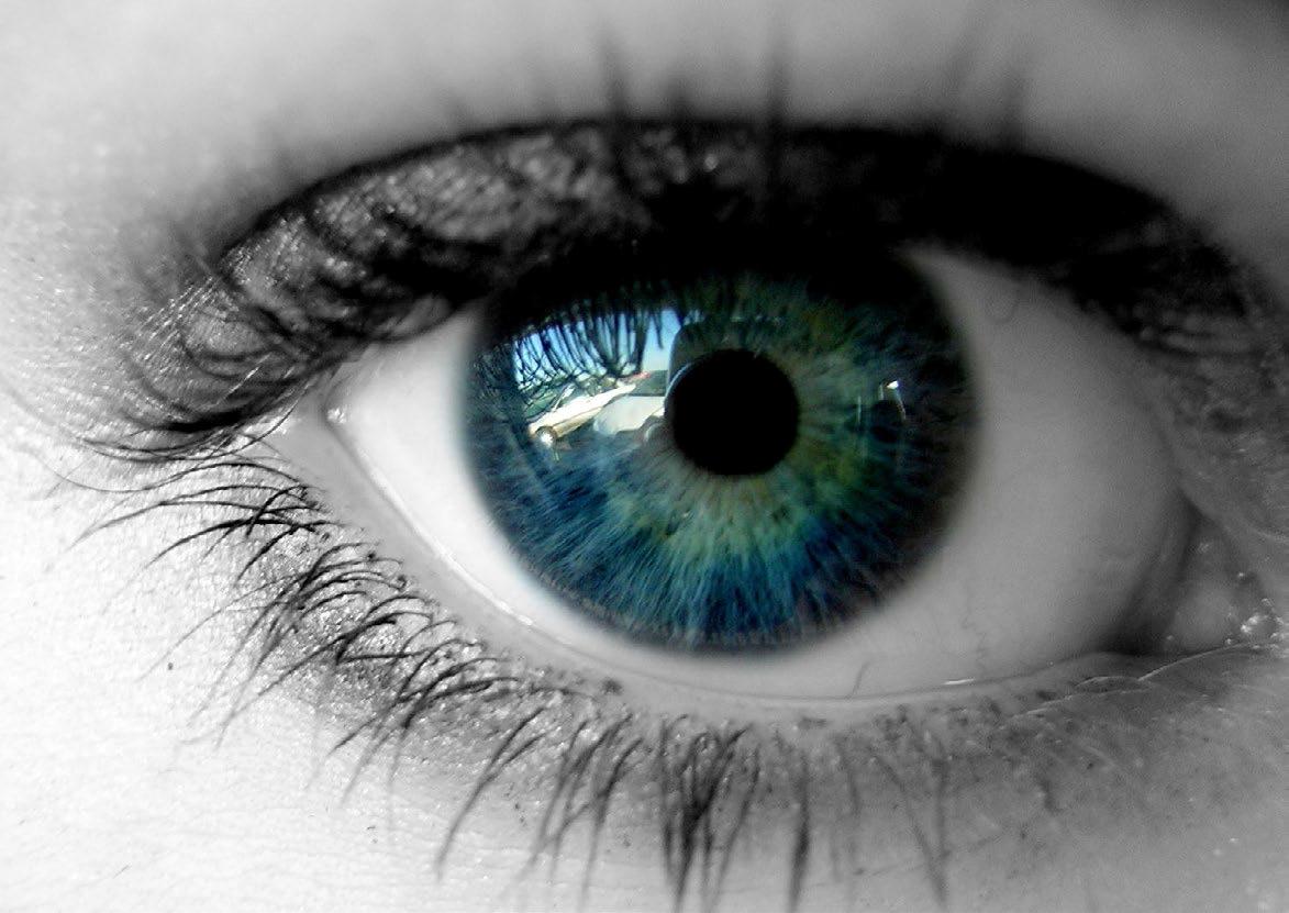 eye.jpg