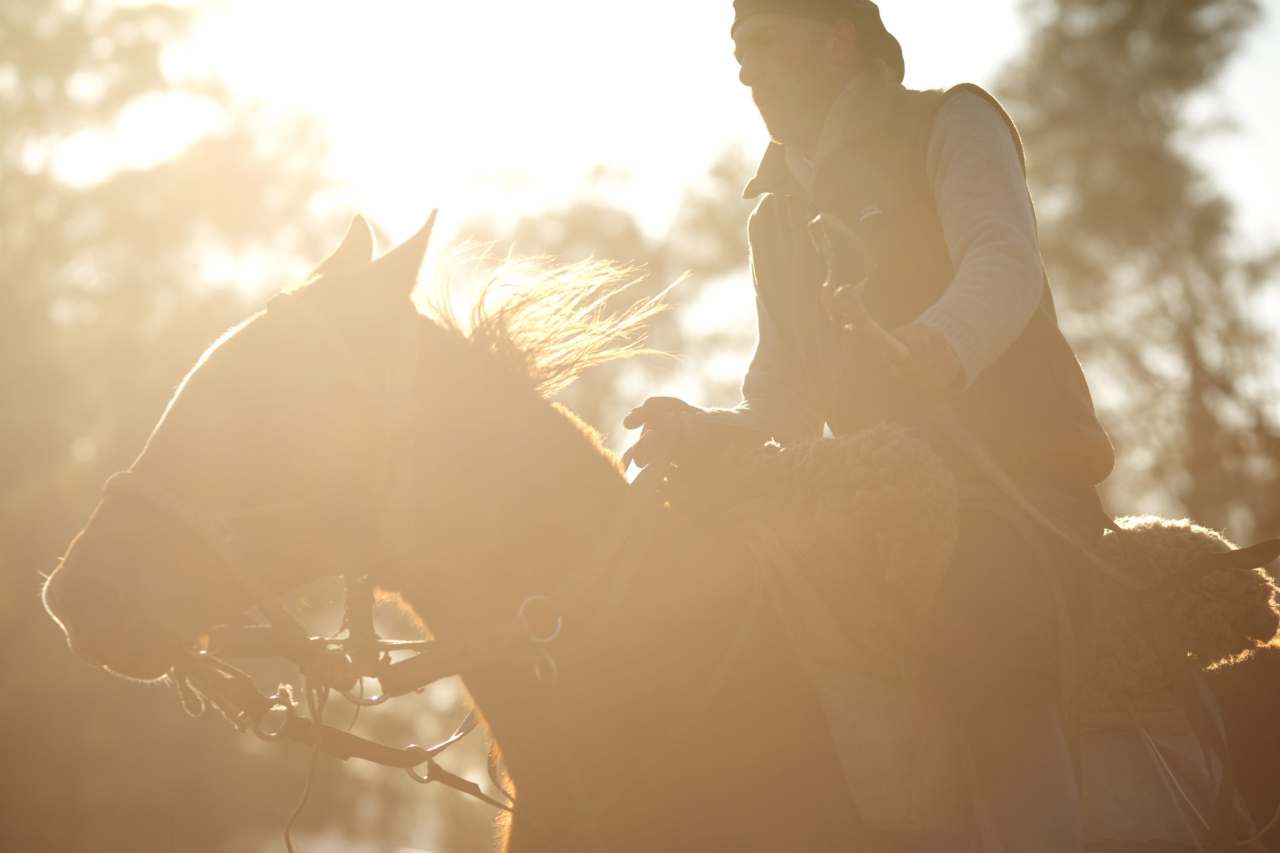 """Gaucho and """"domador,"""" or horse trainer, Luis Daniel Cerrudo works with a young horse."""