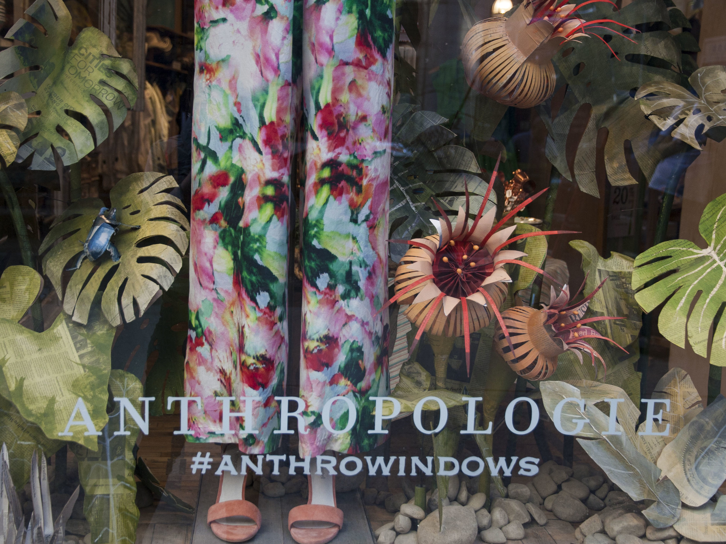 - Anthropologie Rain Forest Windows