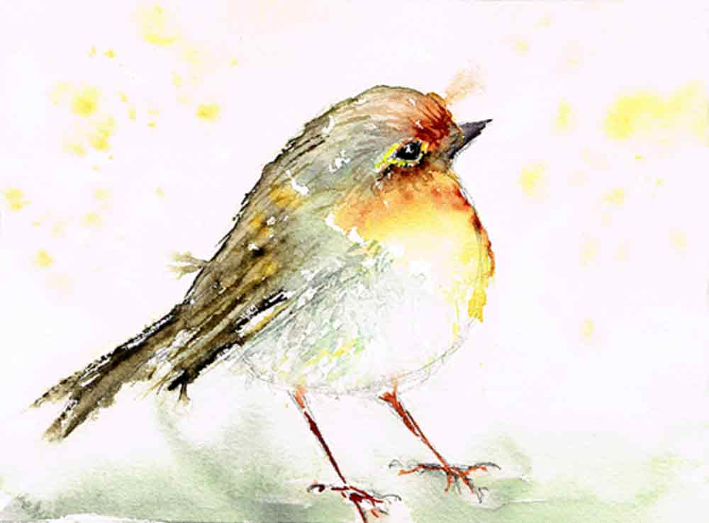 Fat-robin-little-bird-no-5-kw.jpg
