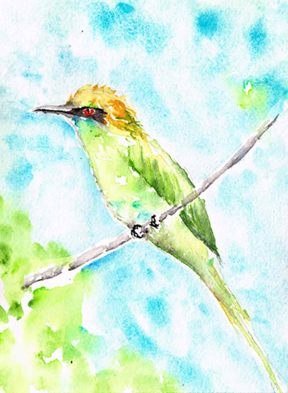 Little-bird-no-3-kw.jpg