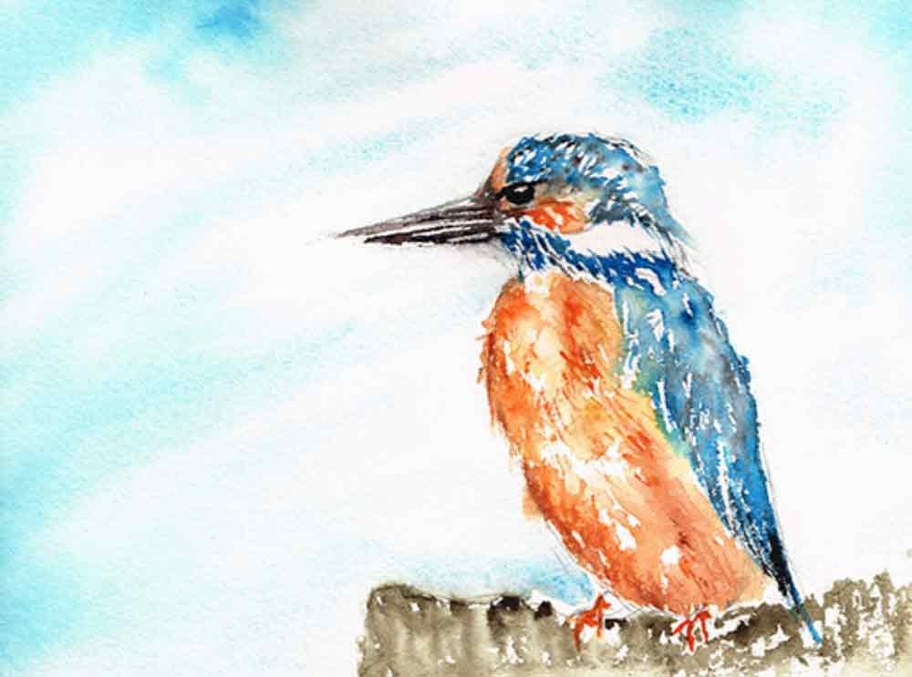 Kingfisher-2-little-birds-no-6-kw.jpg