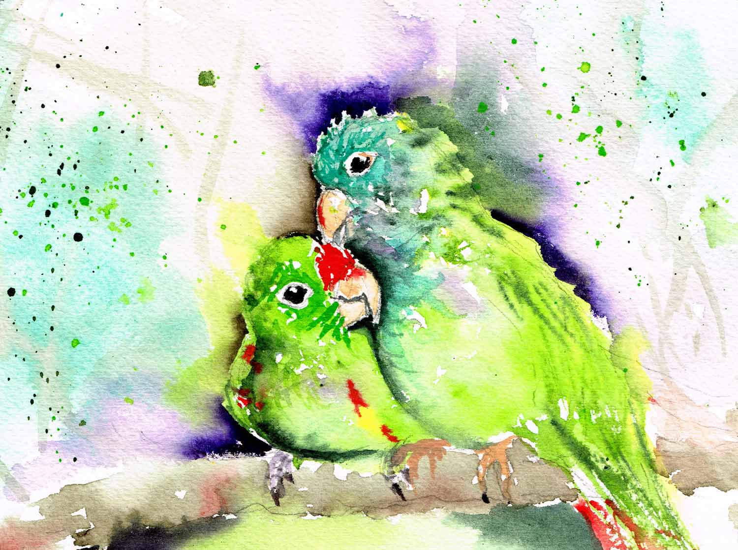 Lovebirds-little-bird-no-12-kw.jpg