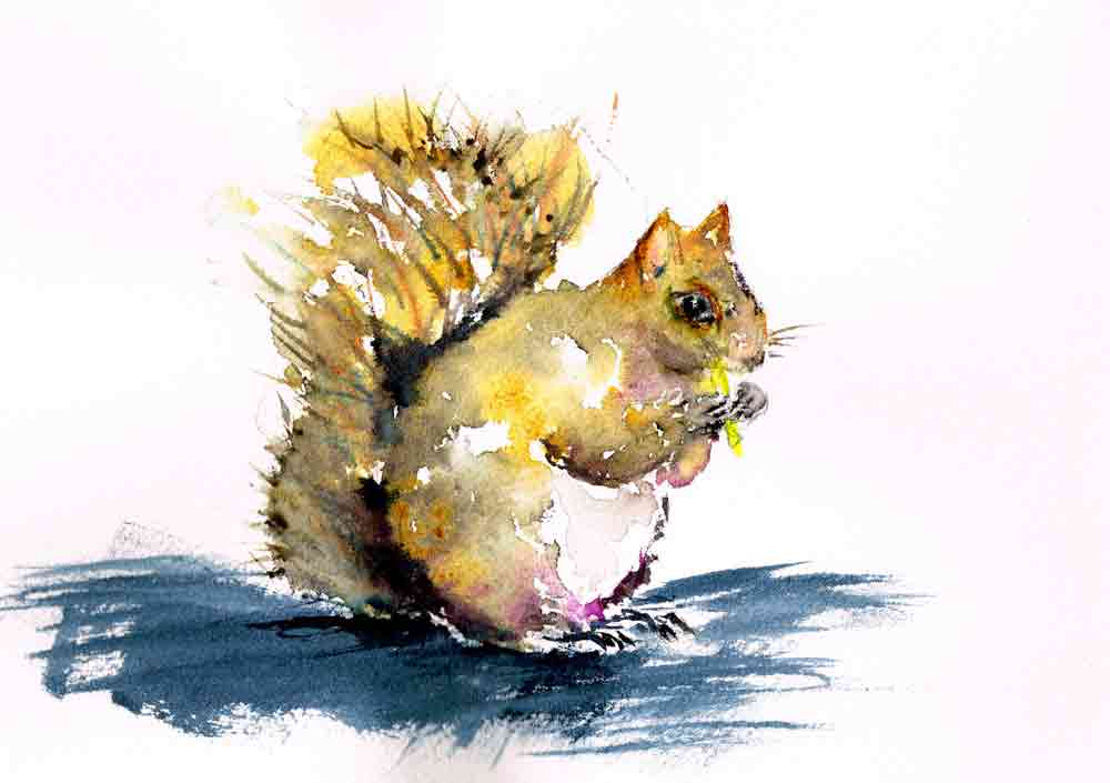 Little-critters-no-8-squirrel-kw.jpg