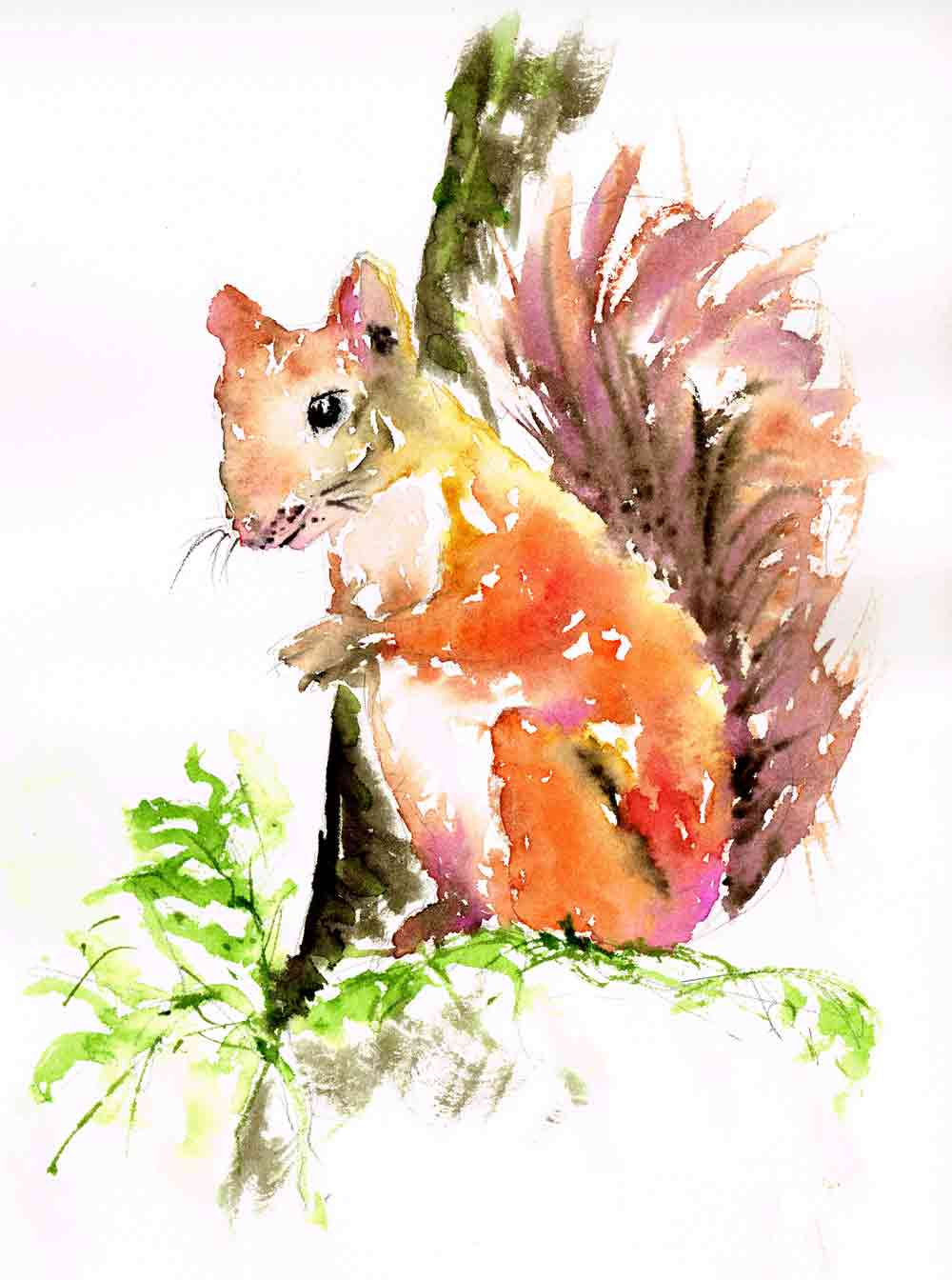 Little-critters-no-9-squirrel-in-a-tree-kw.jpg