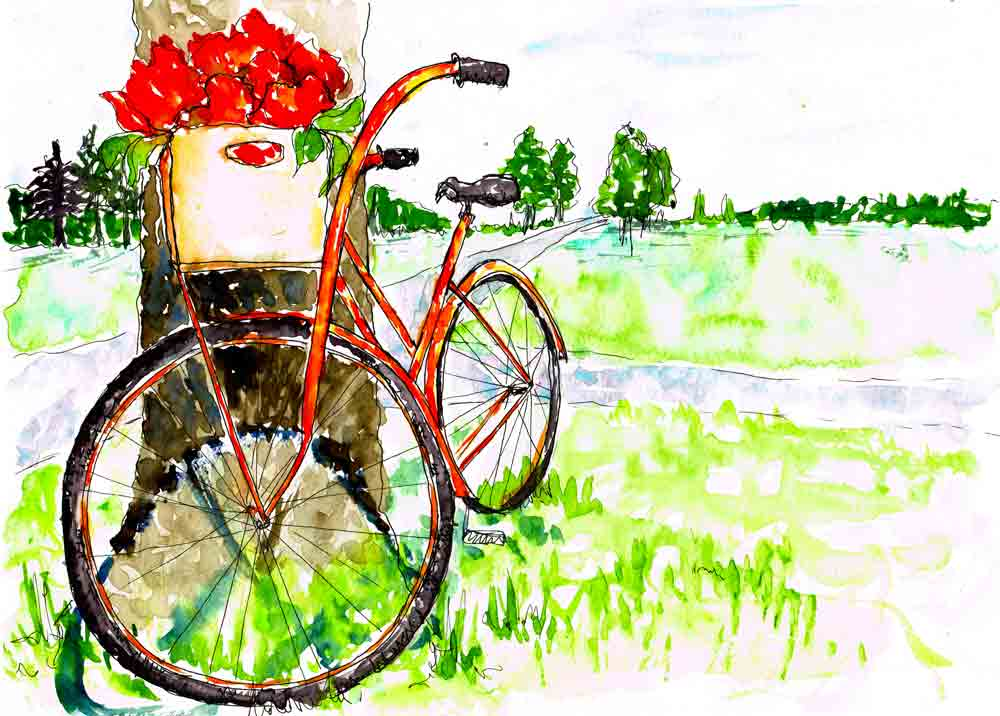 Blossoms-and-Bikes--8-orange-blooms-under-tree-kw.jpg