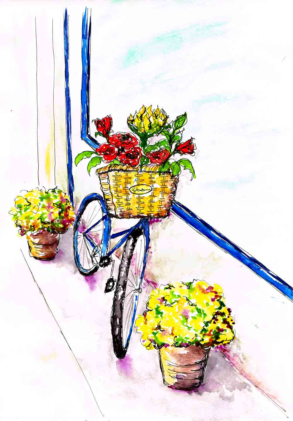 Blossoms-and-Bikes-6-tubs-of-daisies-kw.jpg