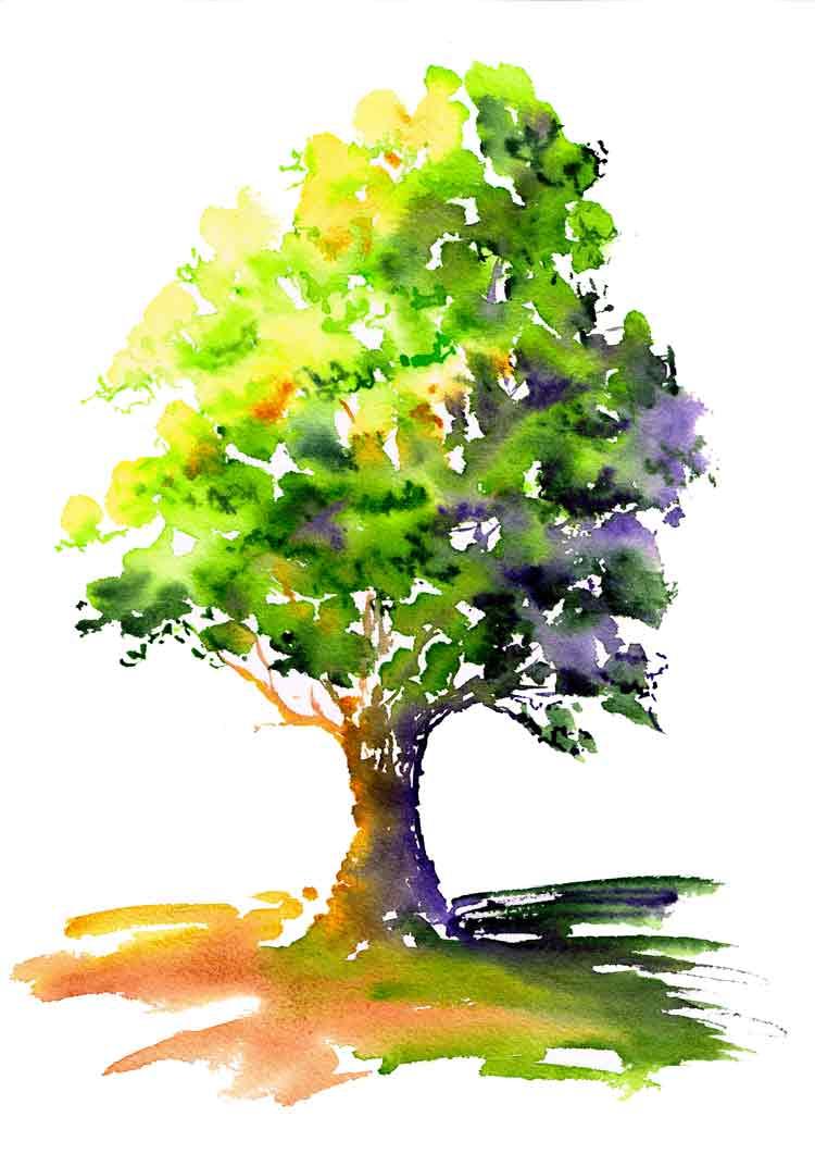 happy-little-trees-no-1-sunlit-tree-kw.jpg