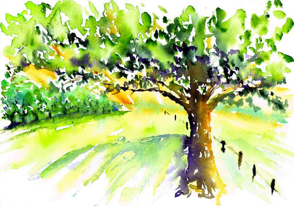 happy-little-trees-no-2-tree-in-vineyard-kw.jpg