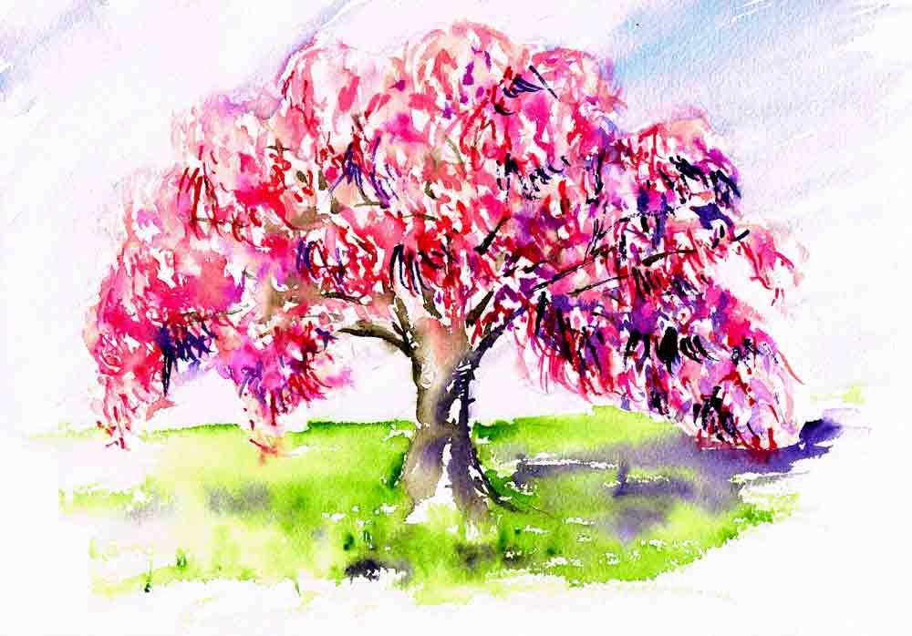 happy-little-trees-no-4-weeping-cherry-kw.jpg