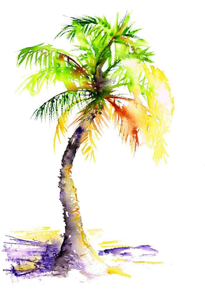 happy-little-trees-no-7-palm-tree-kw.jpg