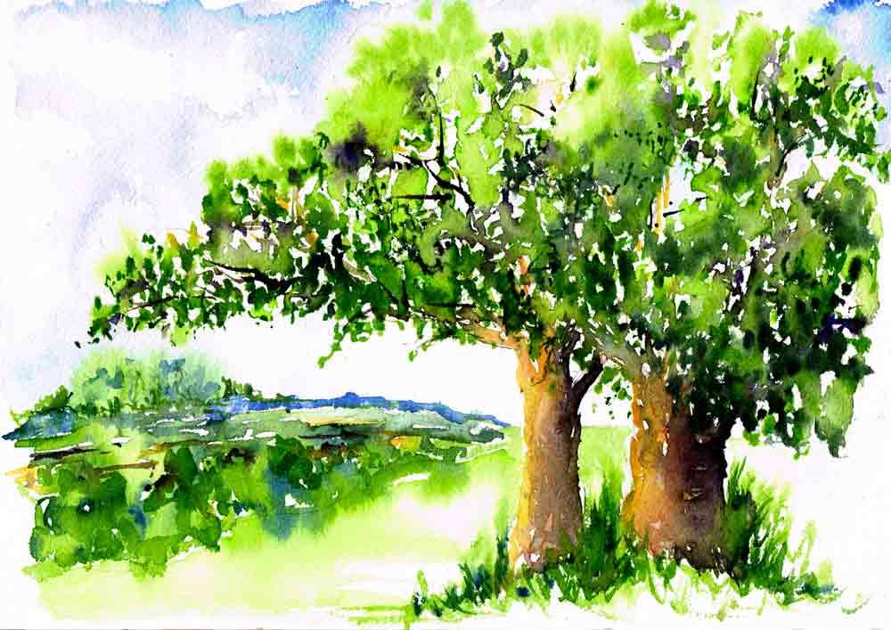 happy-little-trees-no-6-english-fields-kw.jpg