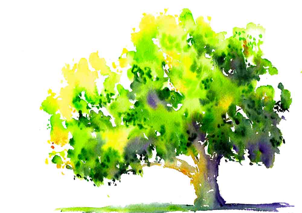 happy-little-trees-no-8-leaning-tree-kw.jpg