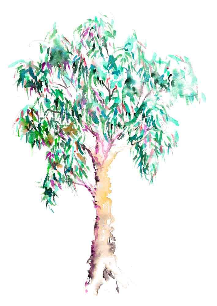happy-little-trees-no-9-gum-tree-kw.jpg