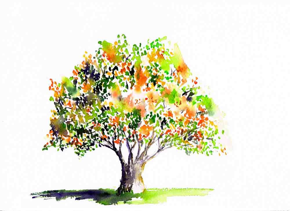 happy-little-trees-no-10-berry-tree-kw.jpg