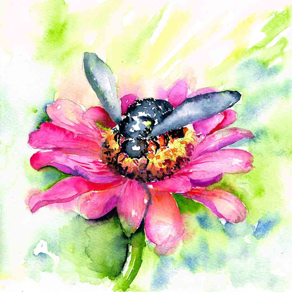 Bugs-Blooms-no-1-Pink-daisy-blue-bee-kw.jpg