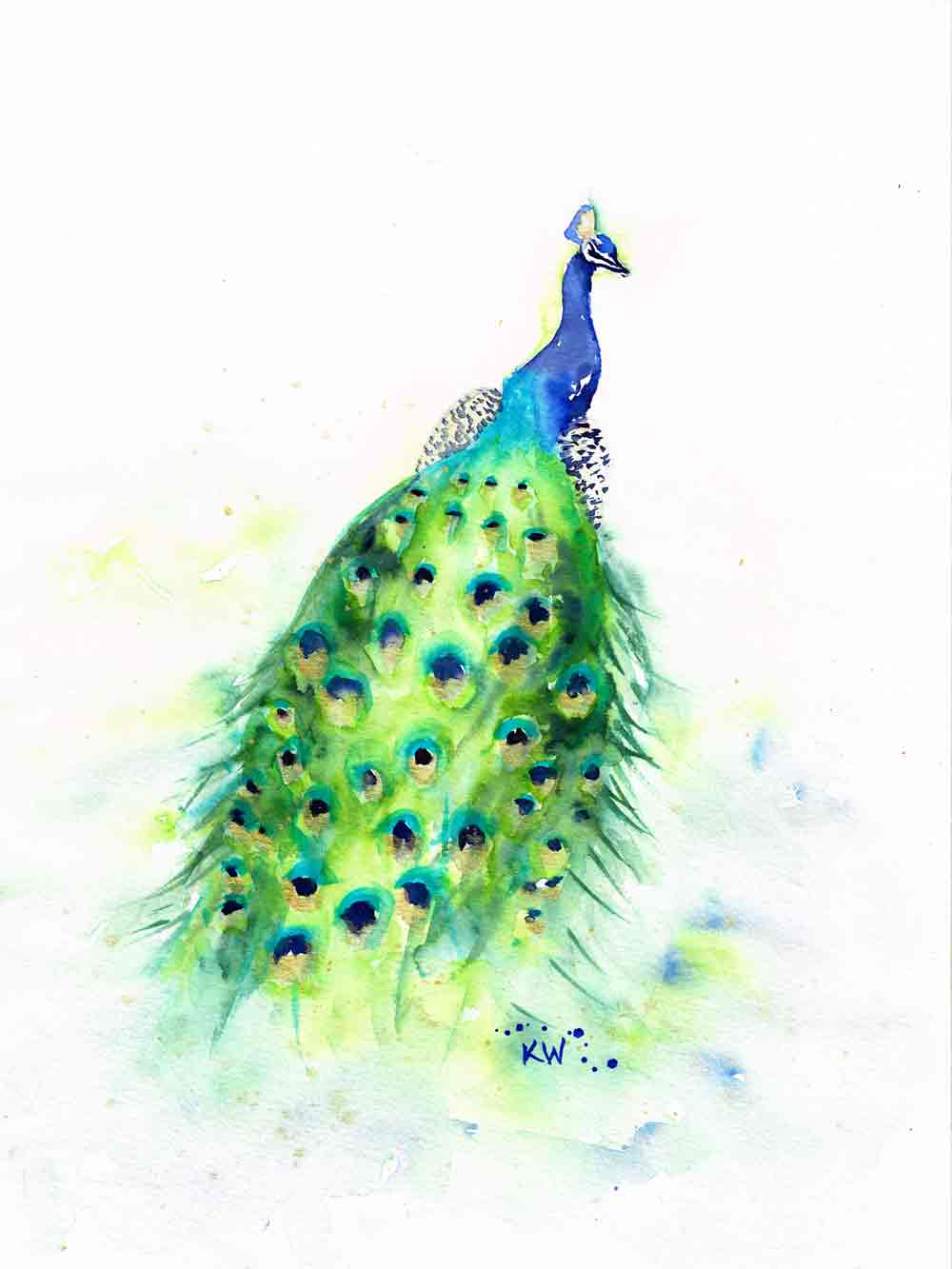 "Dramatic Birds no 6 Peacock Tail (Watercolour on Paper, 9""x12"")"