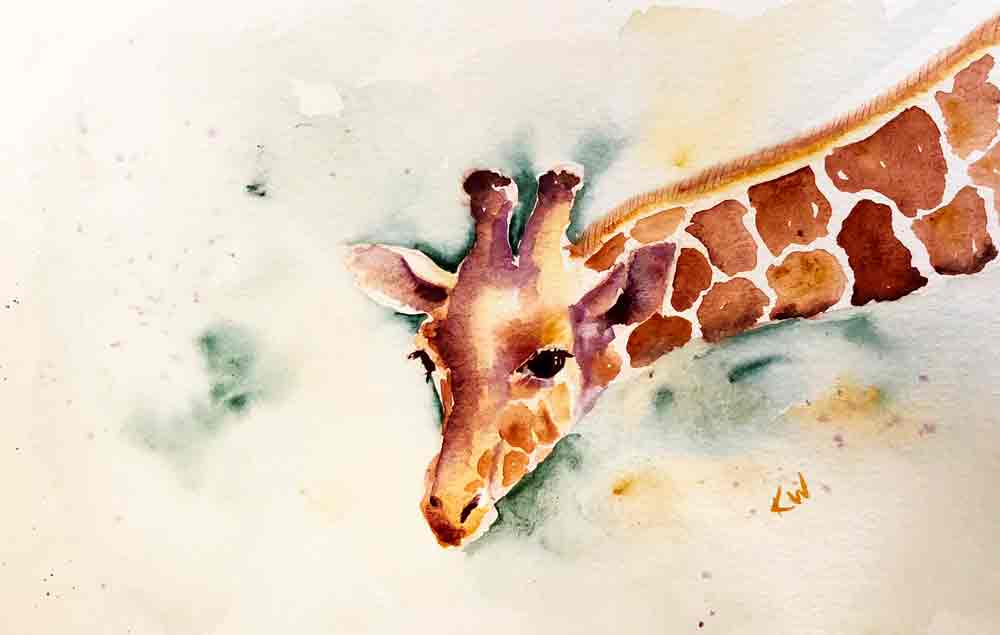 "Giraffe no 4 Leaning In (Watercolour on Paper, 6.5""x11"")"