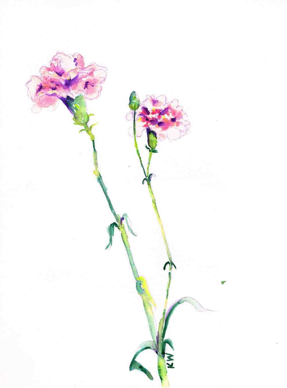 "Fresh Flowers no 5 - (Watercolour on paper, 9""x 12"")"